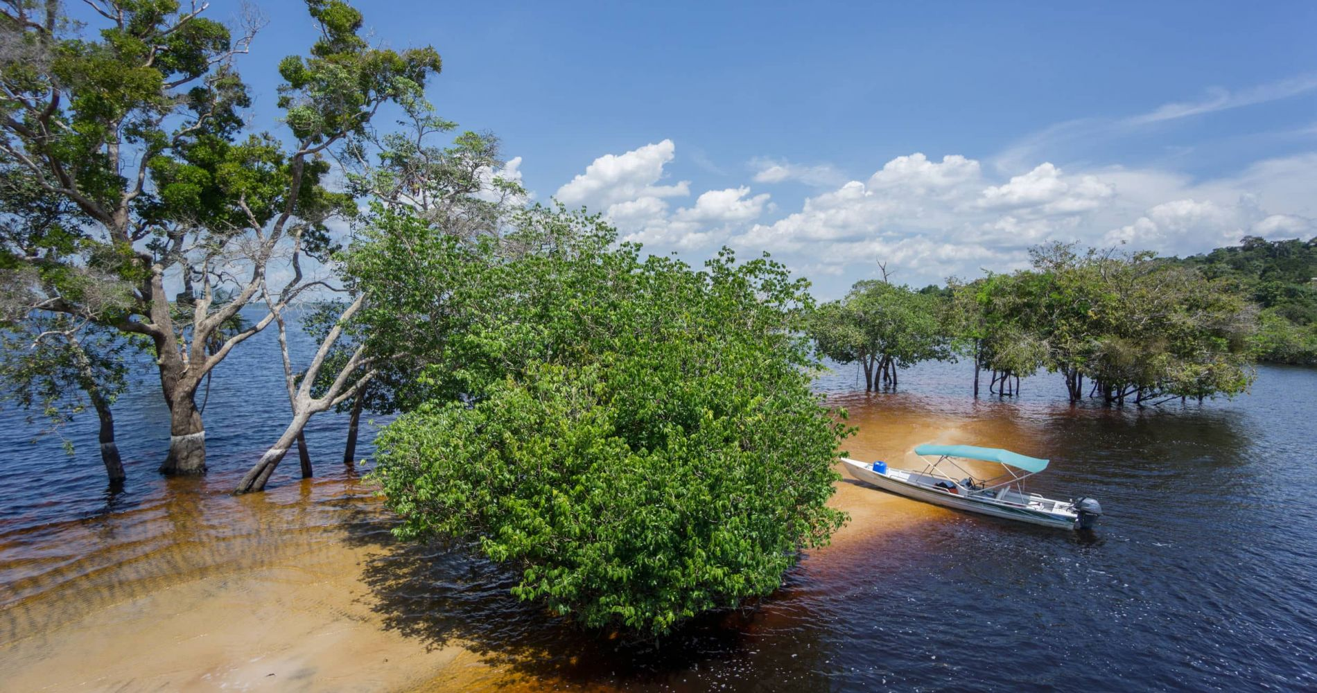Full-Day Experience on the Amazon River in Brazil