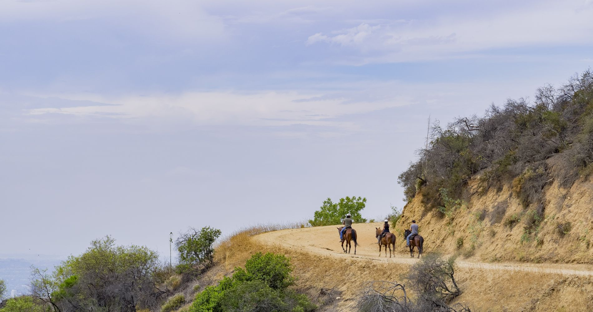 Horseback Ride Under the Hollywood Sign in Los Angeles