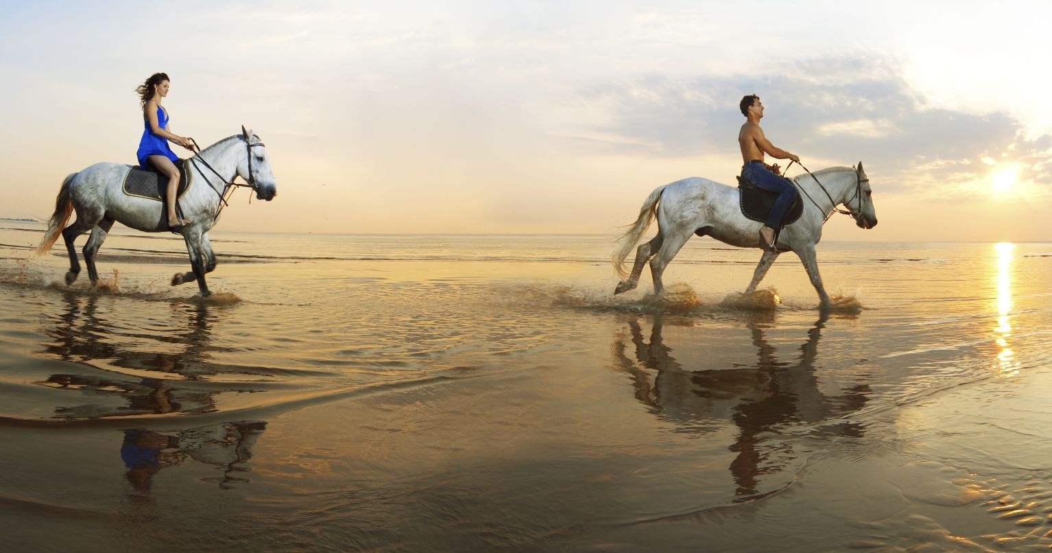 Horseback Ride Beach United Kingdom Tinggly Experience Gifts