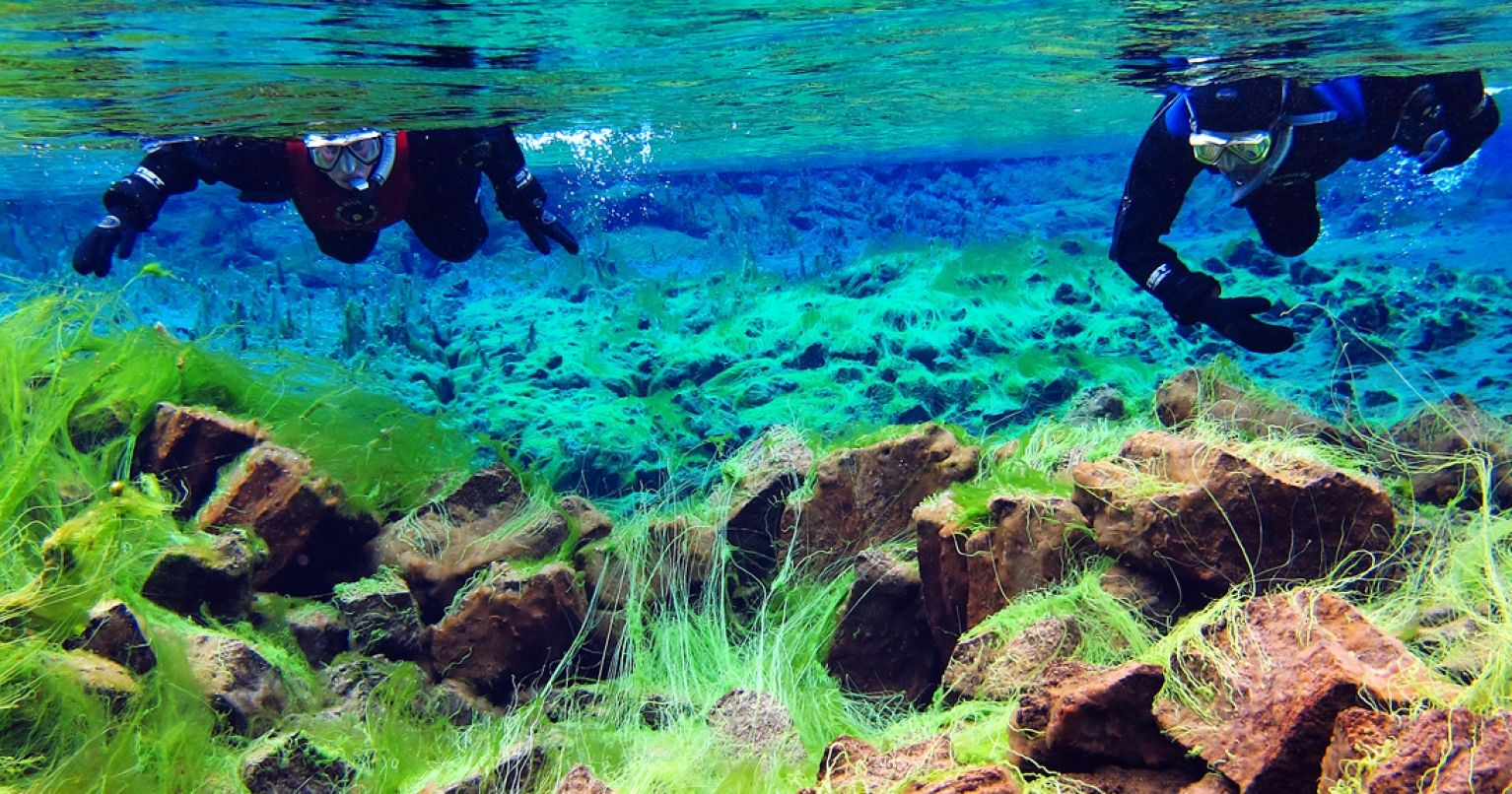 Snorkeling Silfra Thingvellir National Park Iceland Tinggly Experience Gifts