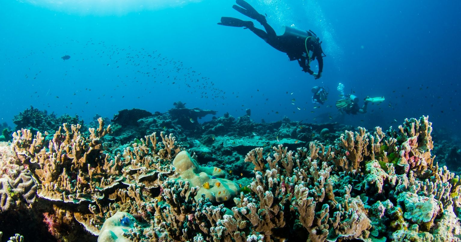 Marvelous Scuba Diving Thailand Tinggly Experience Gifts