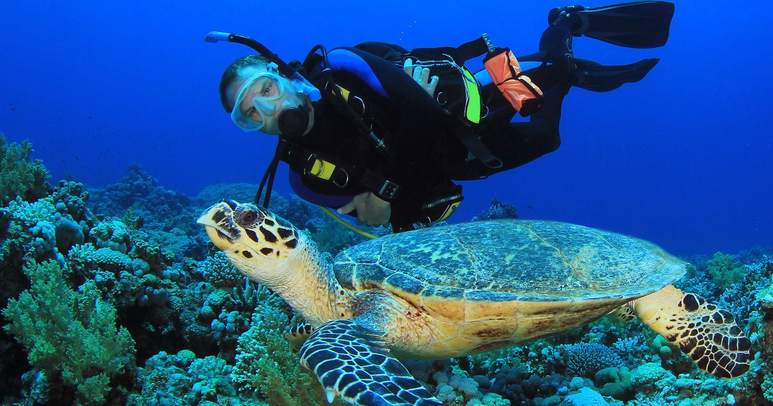 Incredible Scuba Experience Cancun Tinggly Experience Gifts