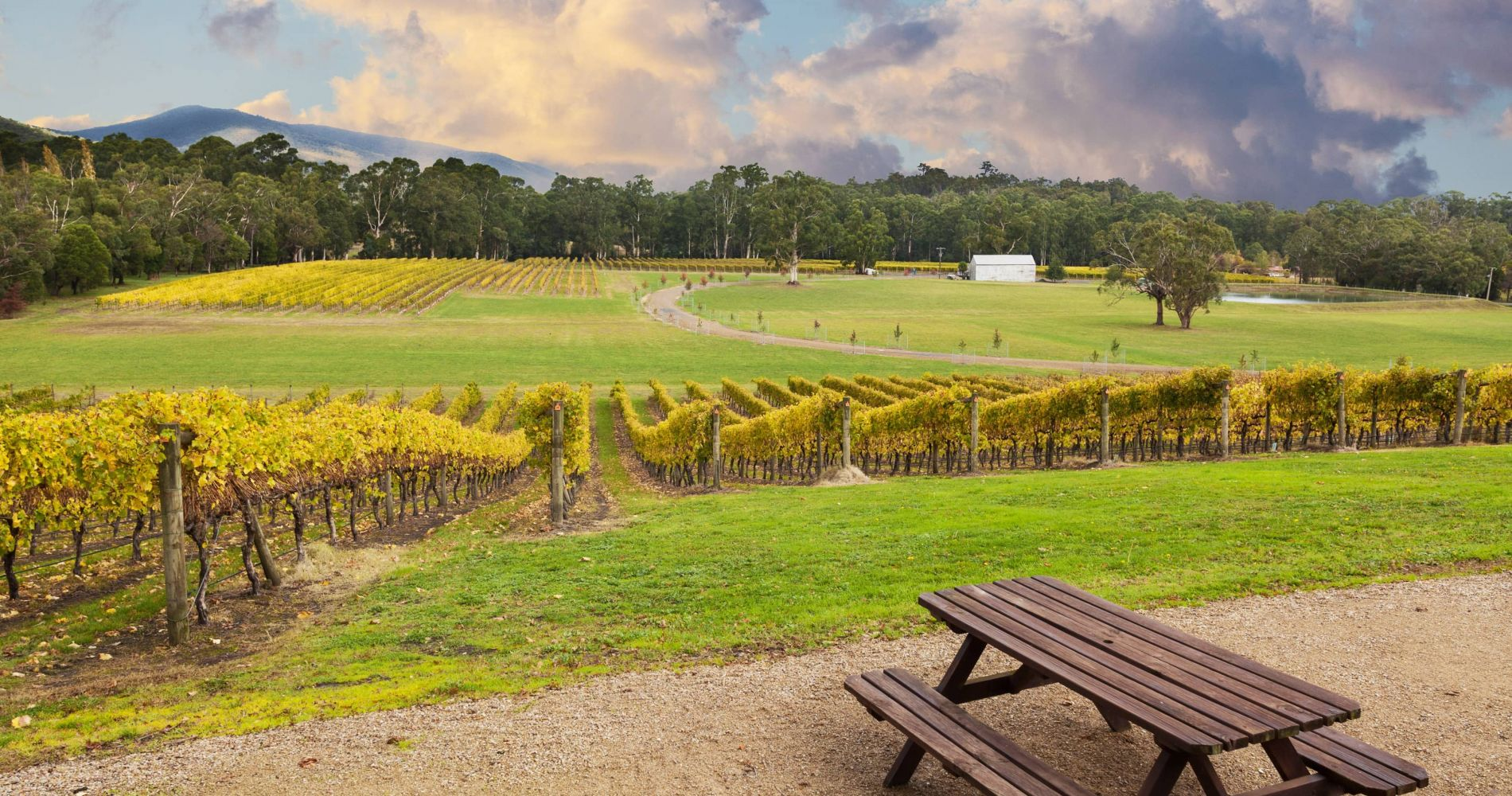 Yarra Valley Cider and Ale Trail in Melbourne