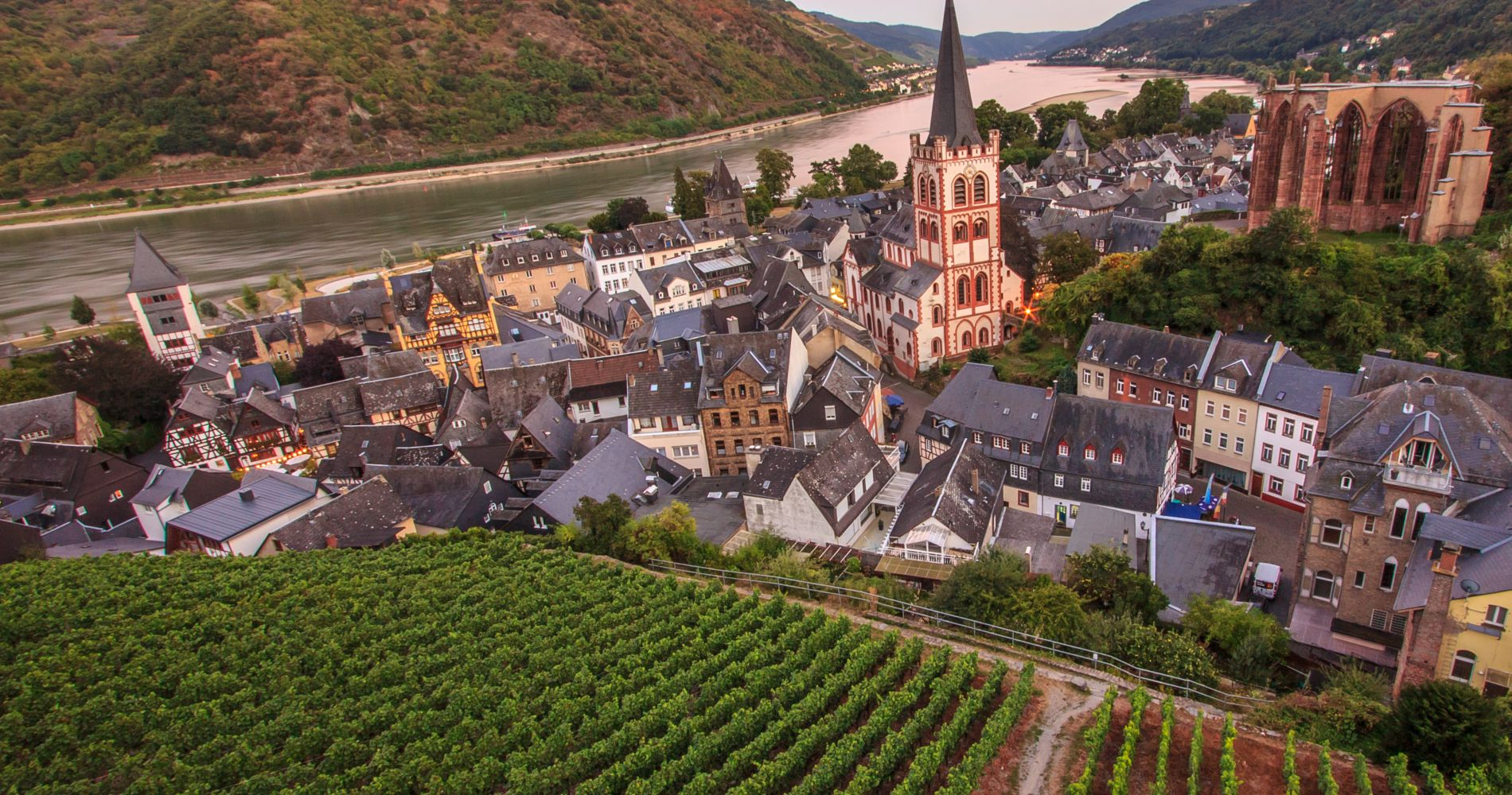 Day Trip down the Rhine with Wine Tasting from Frankfurt