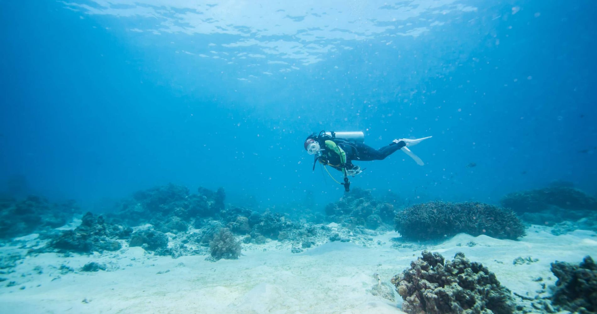 Full-Day Scuba Diving in Tenerife