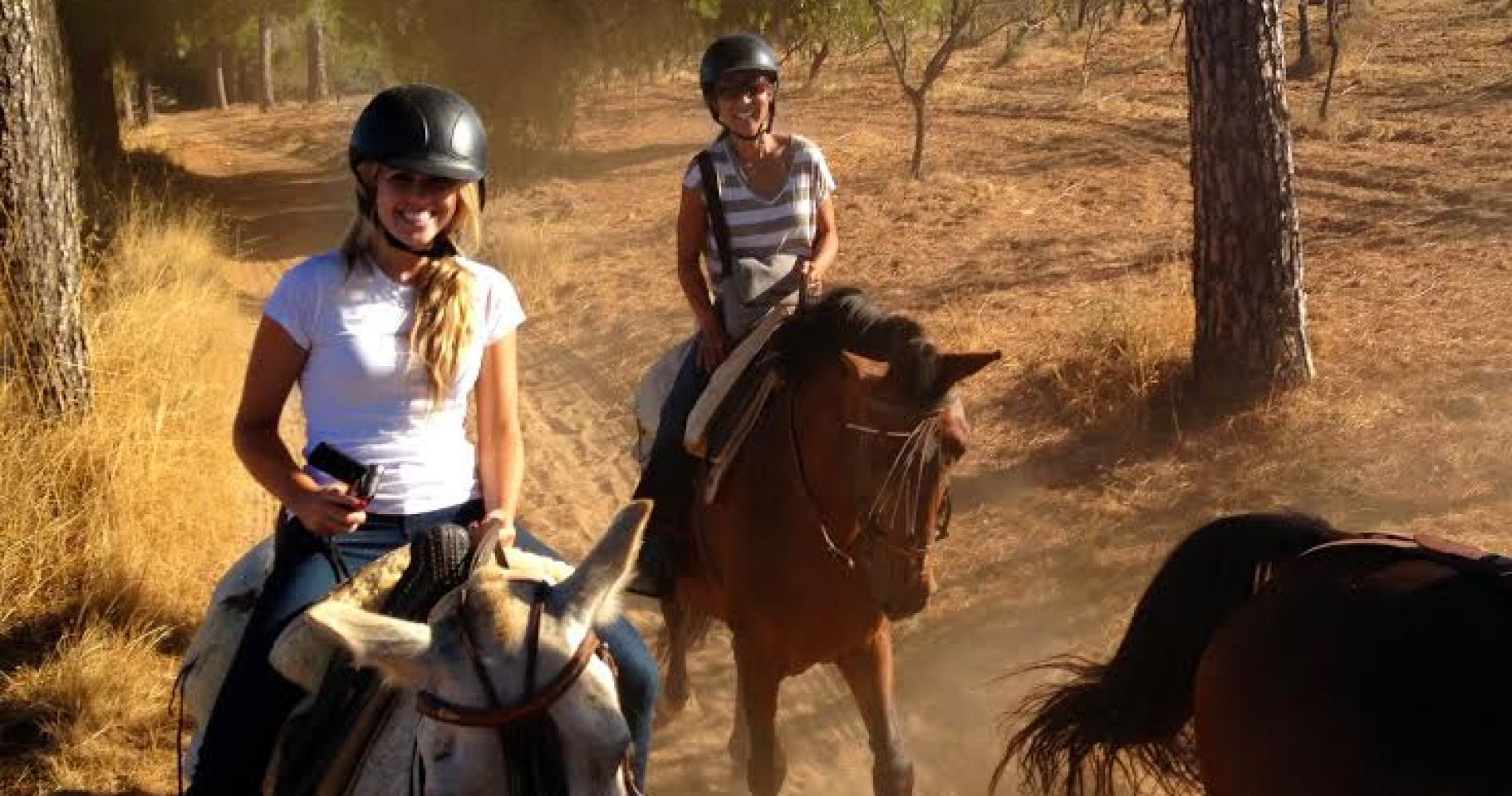 Horse Riding Trip Andalusia Tinggly Experience Gifts