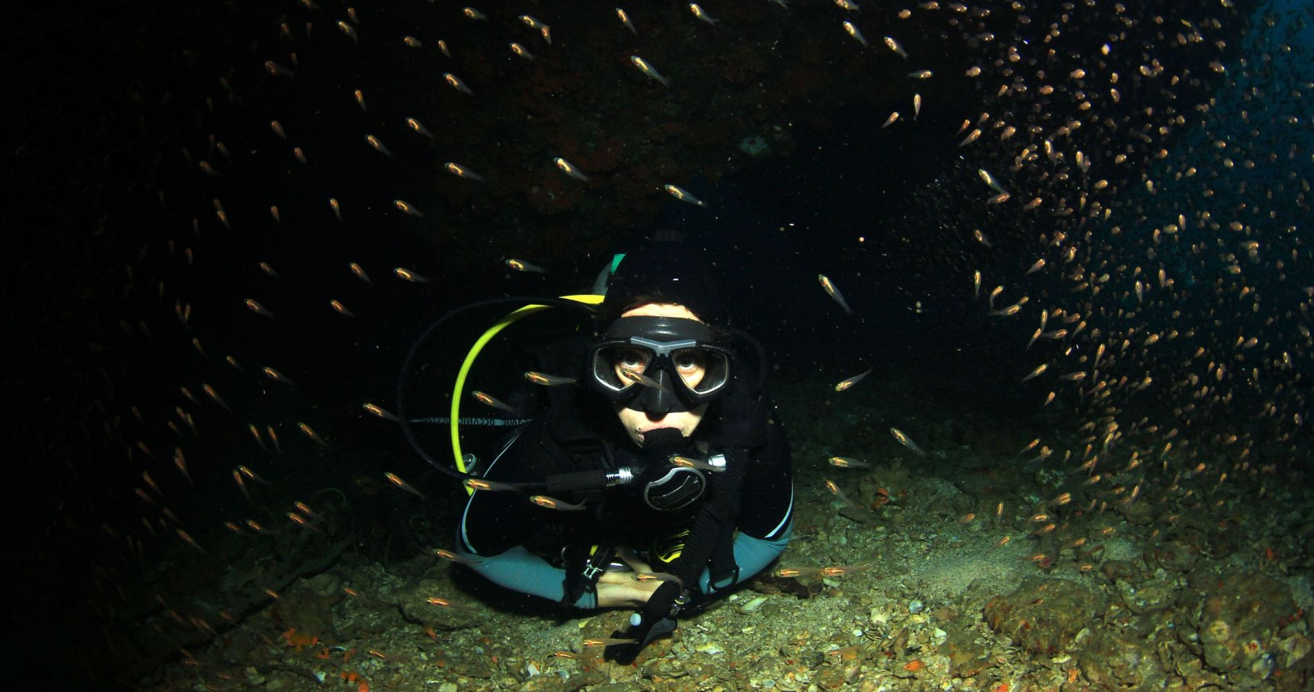 2-Hour Night Diving Session in Dubrovnik