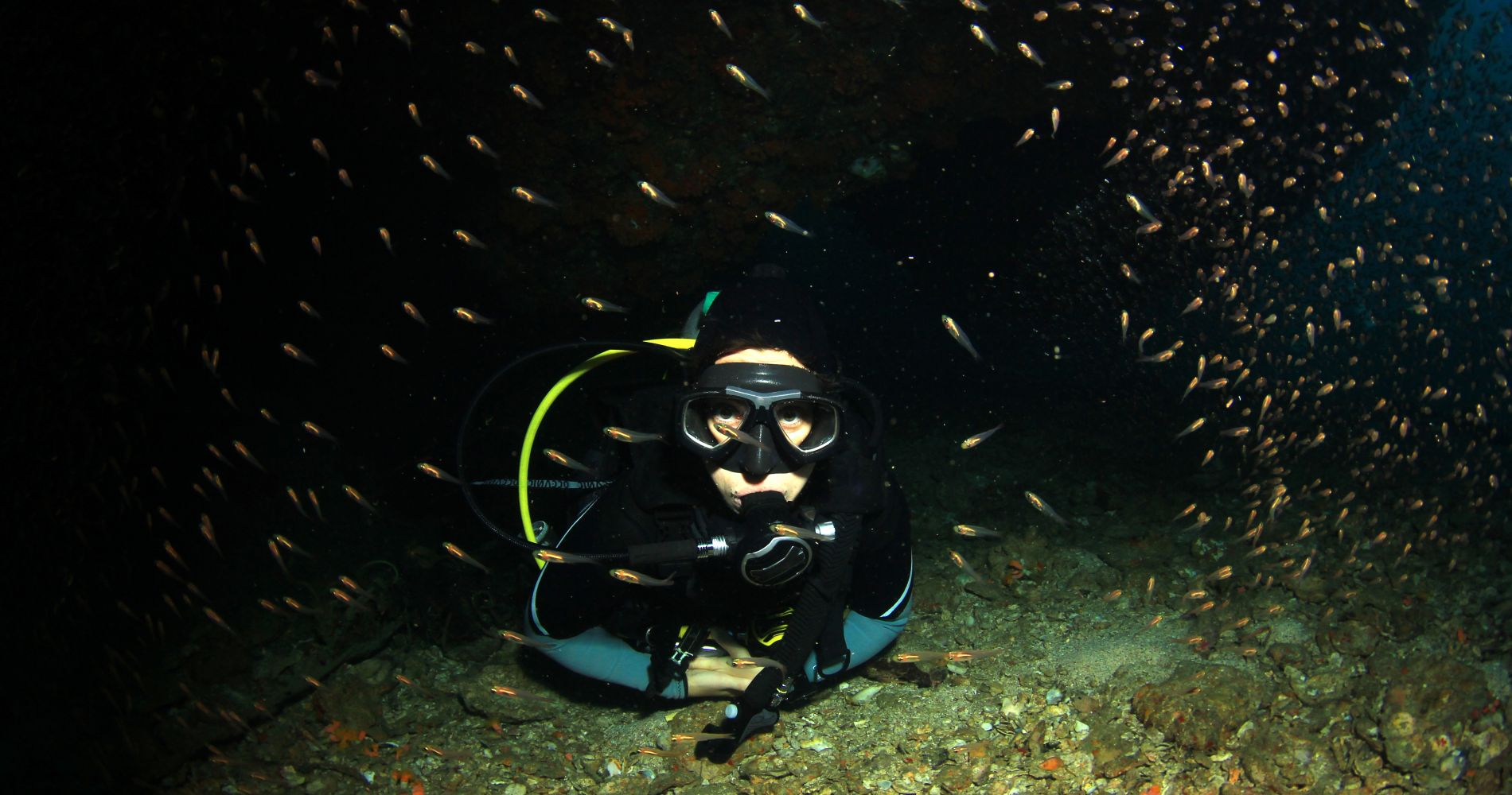2-Hour Night Diving Session Dubrovnik Tinggly Experience Gifts