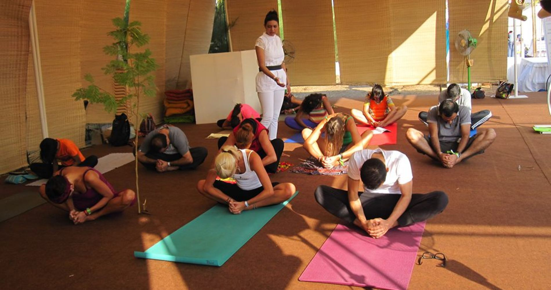 Experiential Yoga Camp in the Oldest Yoga Institute India  Tinggly Experience Gifts