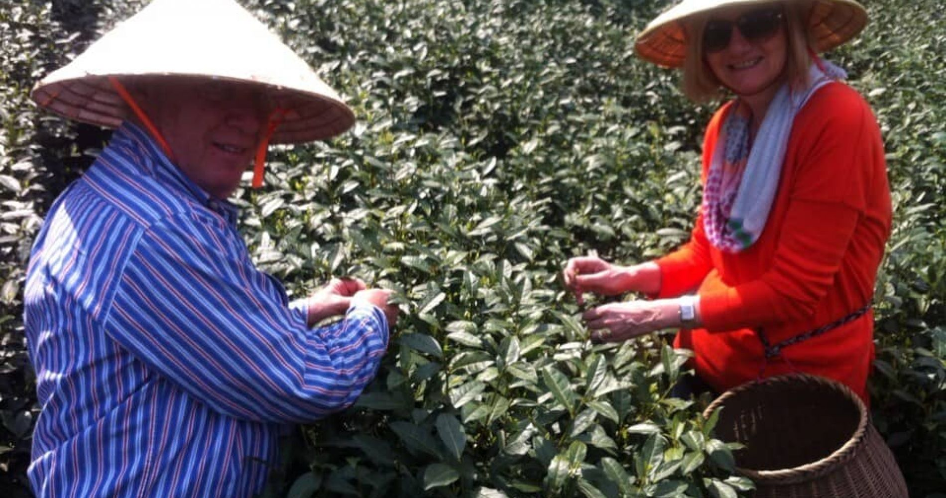 Historical Tea Culture Experience in China for Two