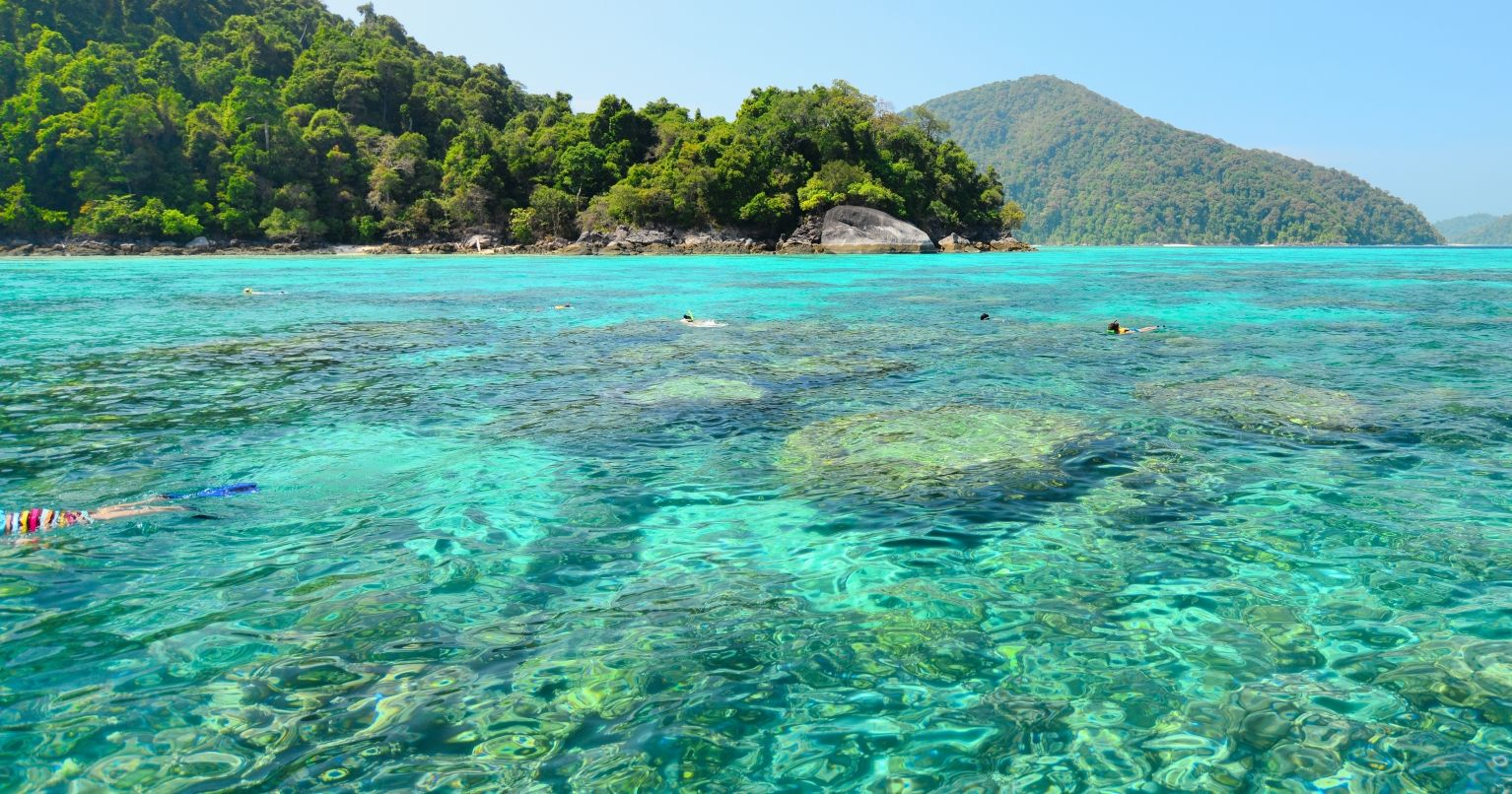 Green Island Snorkelling Adventure With Lunch Cruise  Tinggly Experience Gifts