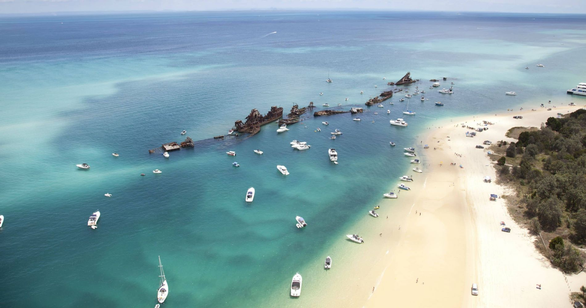 Stunning Moreton Island Cruise with Lunch for Two