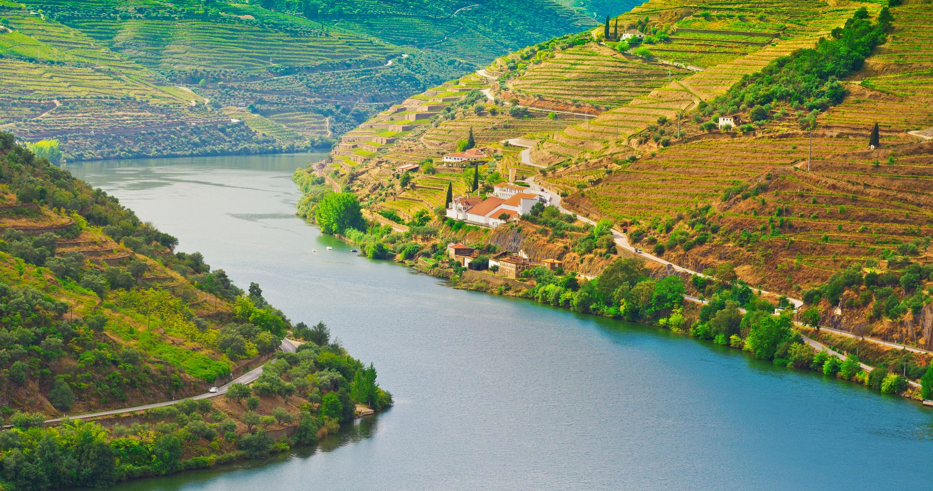 Douro Wine Experience Portuga Tinggly Gifts