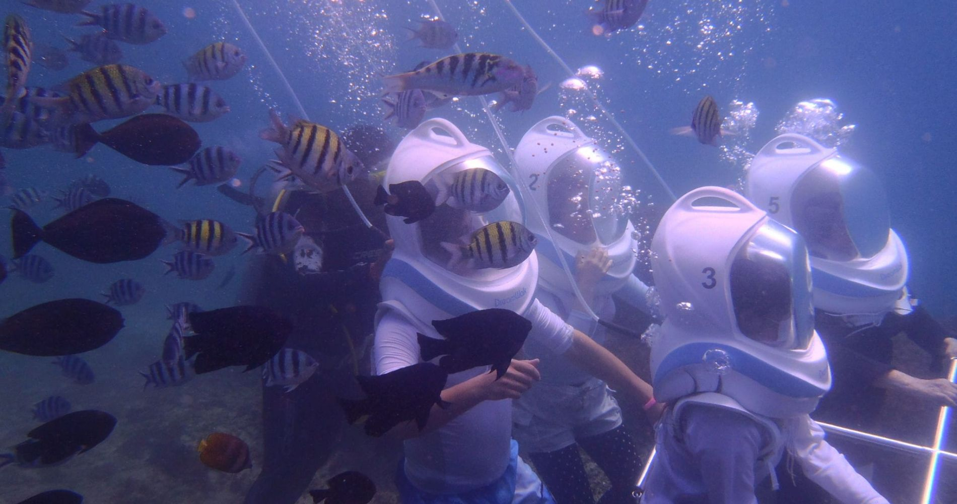 Underwater Sea Walking Experience in Indonesia for Two