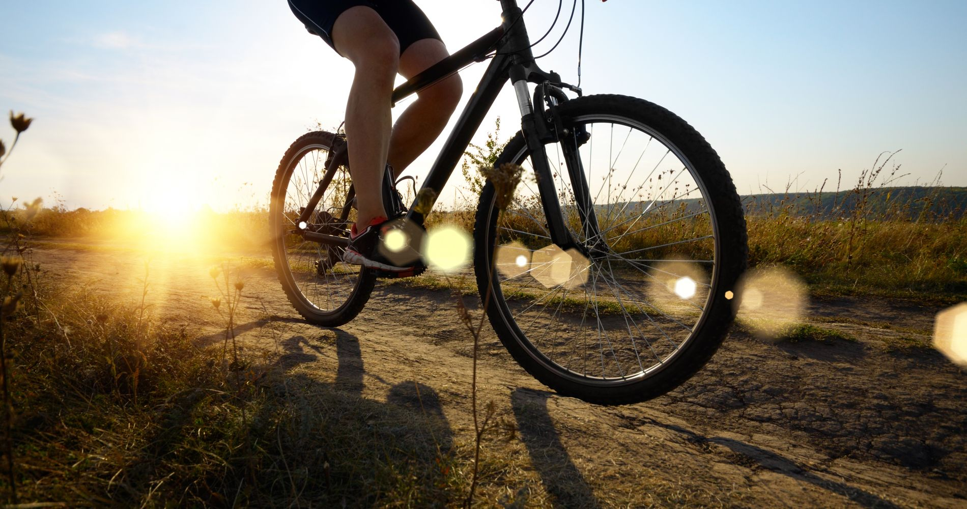 Mountain Bike Experience in Los Angeles