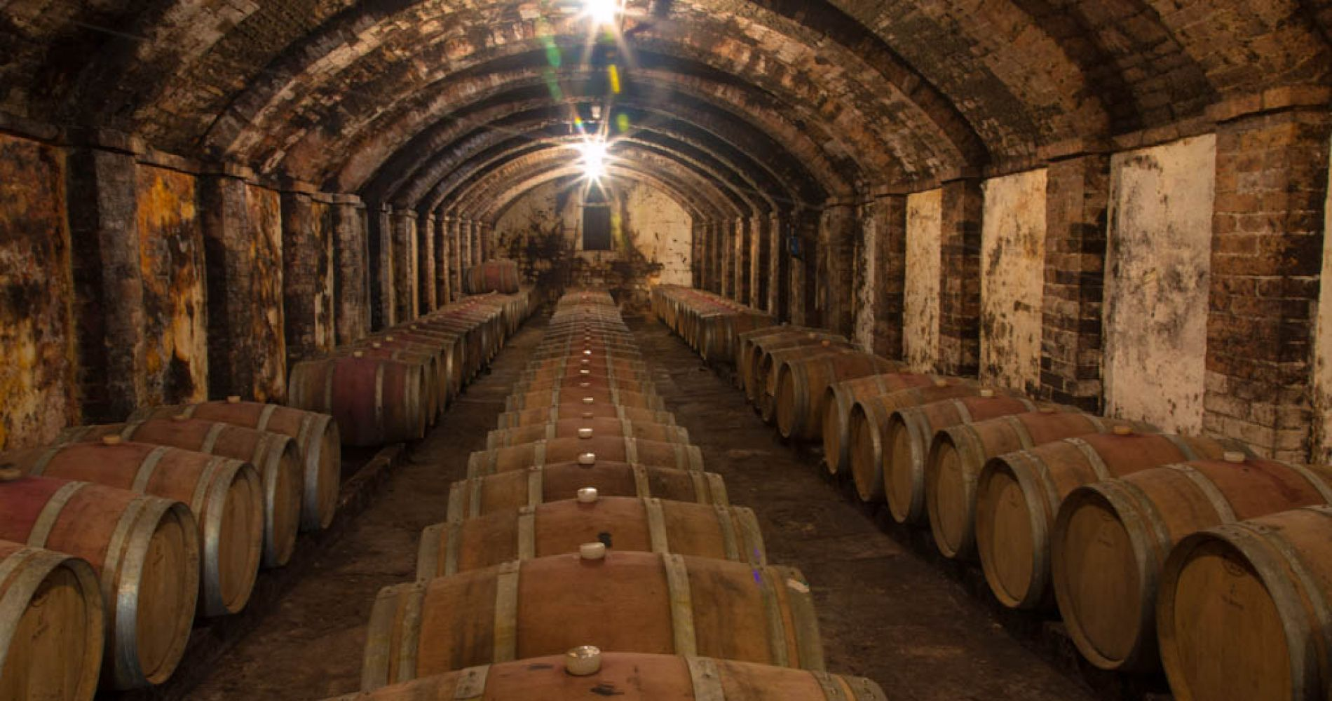 Wine-Tasting Experience in Beautiful Tuscany for Two