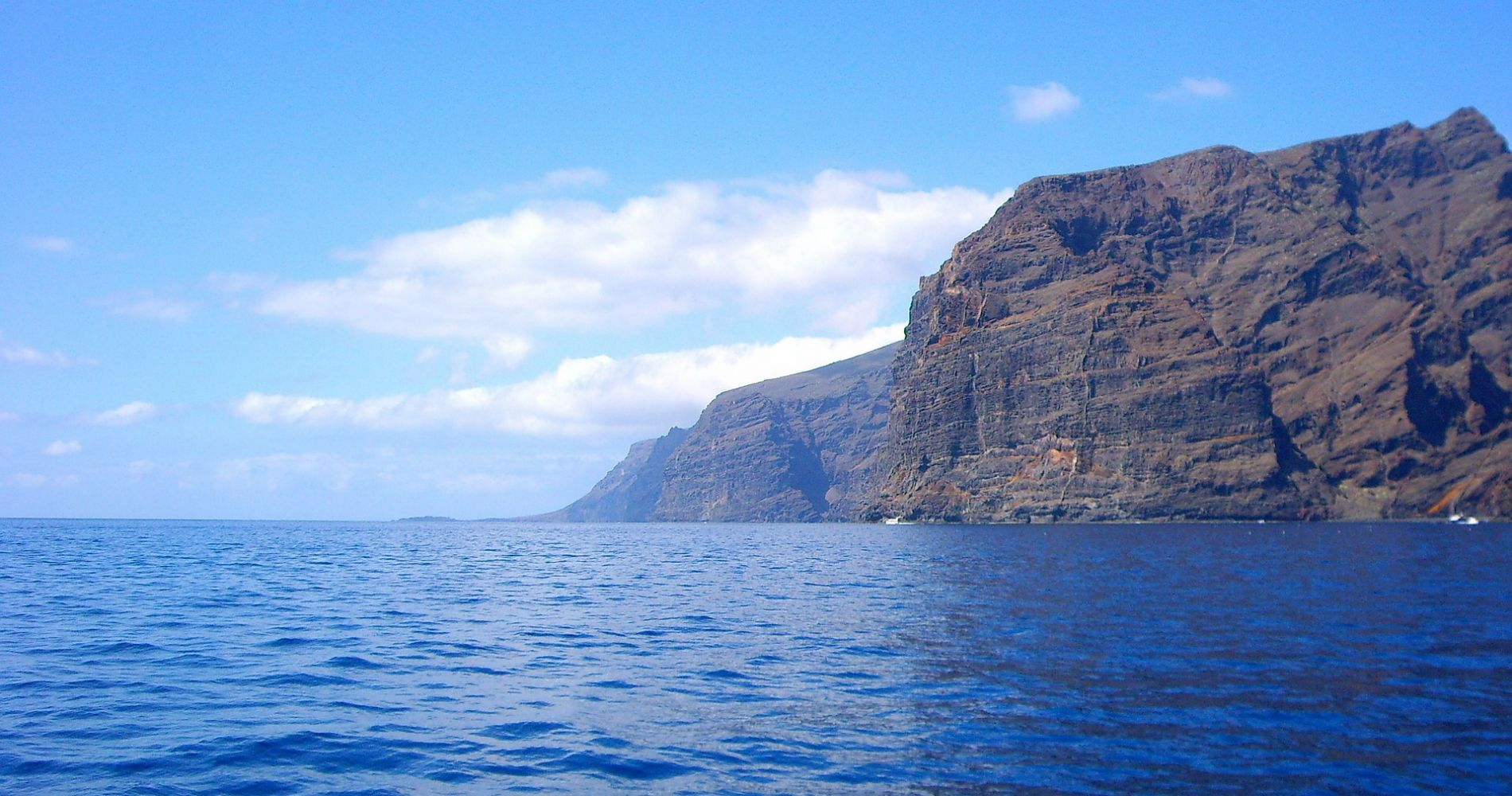 Luxurious Yacht Cruise with Whale and Dolphin Watching Tenerife Tinggly Experience Gift