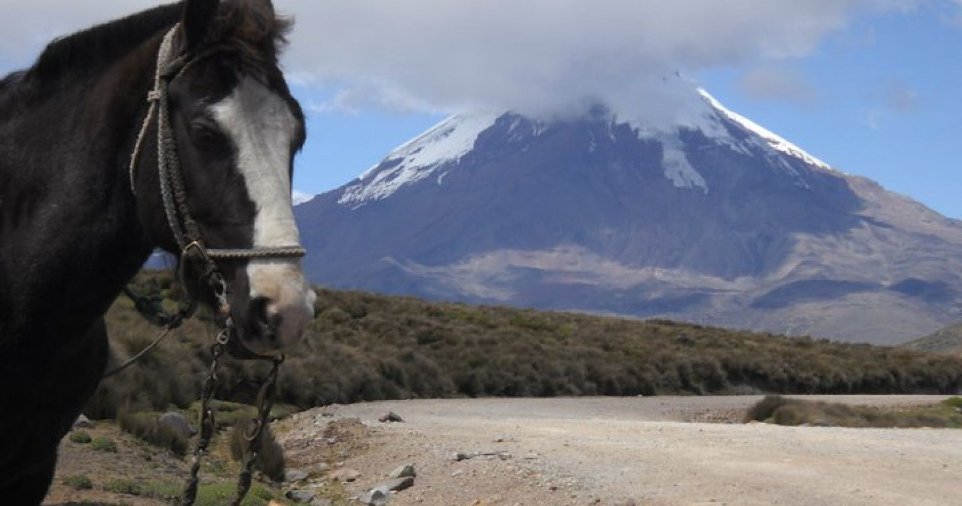Scenic Equestrian Full Day Trip Ecuador Tinggly Experience Gift