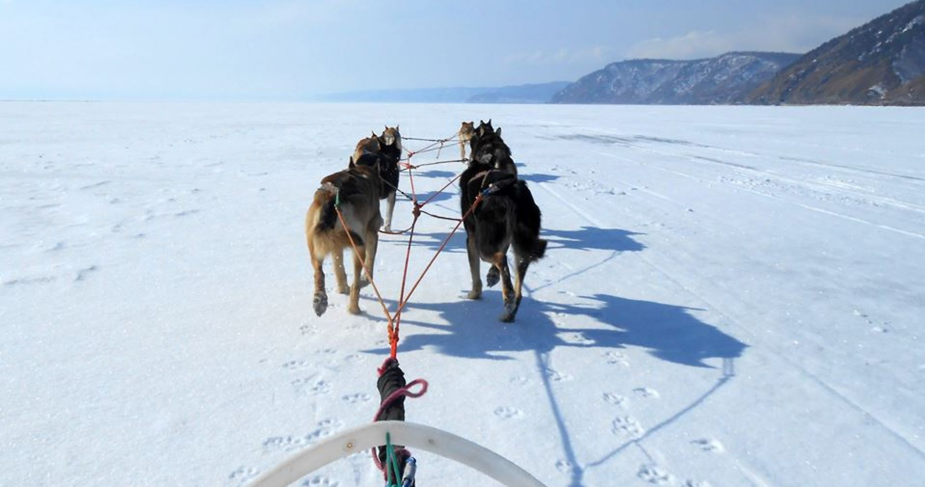 Incredible 9 day dog-sled expedition Russia Tinggly Experience Gift