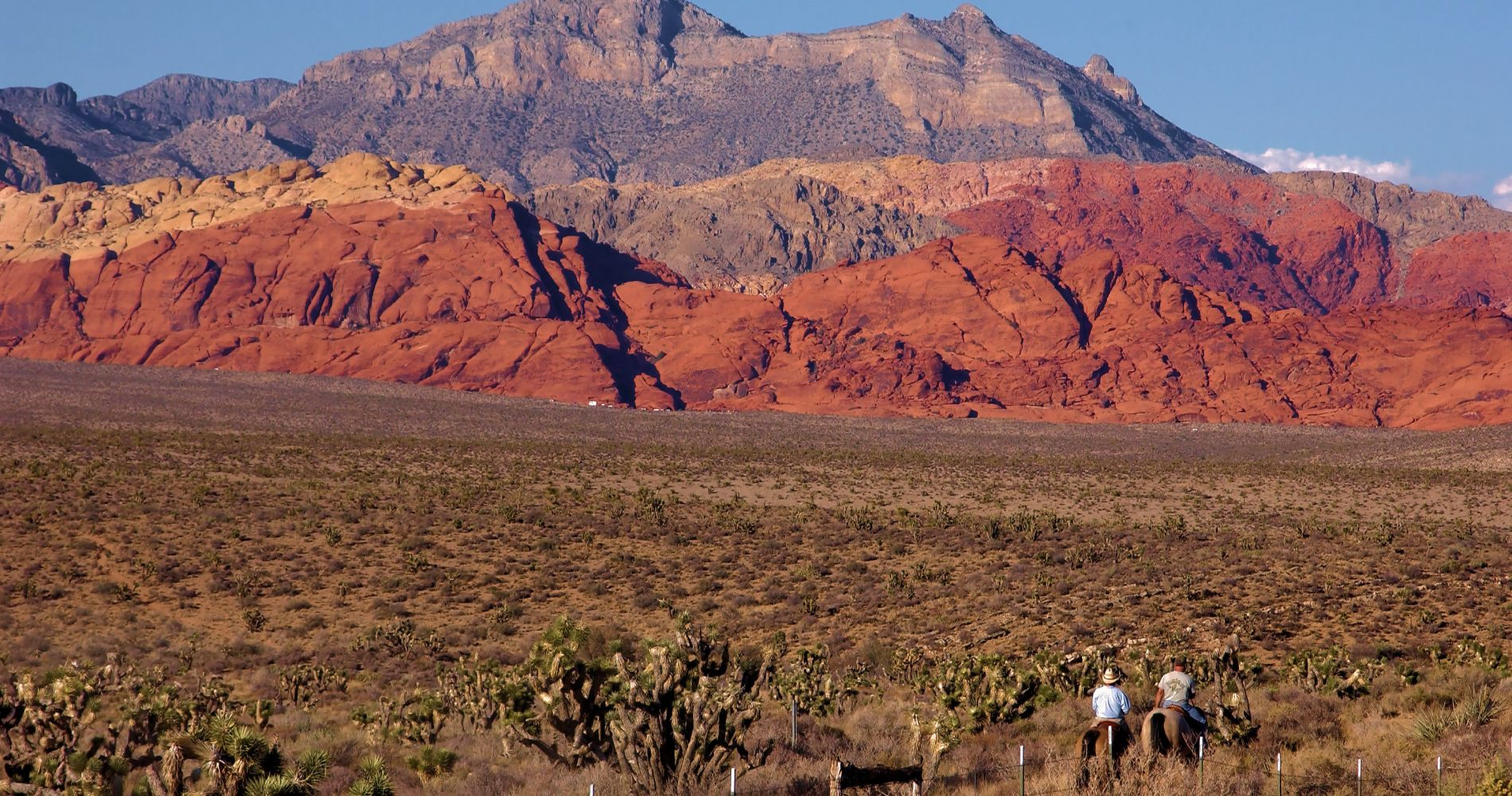 Red Rock Canyon near Las Vegas Tinggly Experience Gift