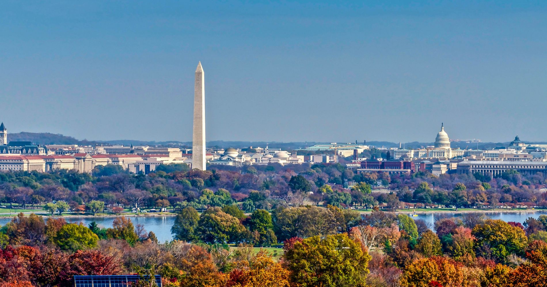 Experience Washington D.C. Your Way Tinggly Gifts