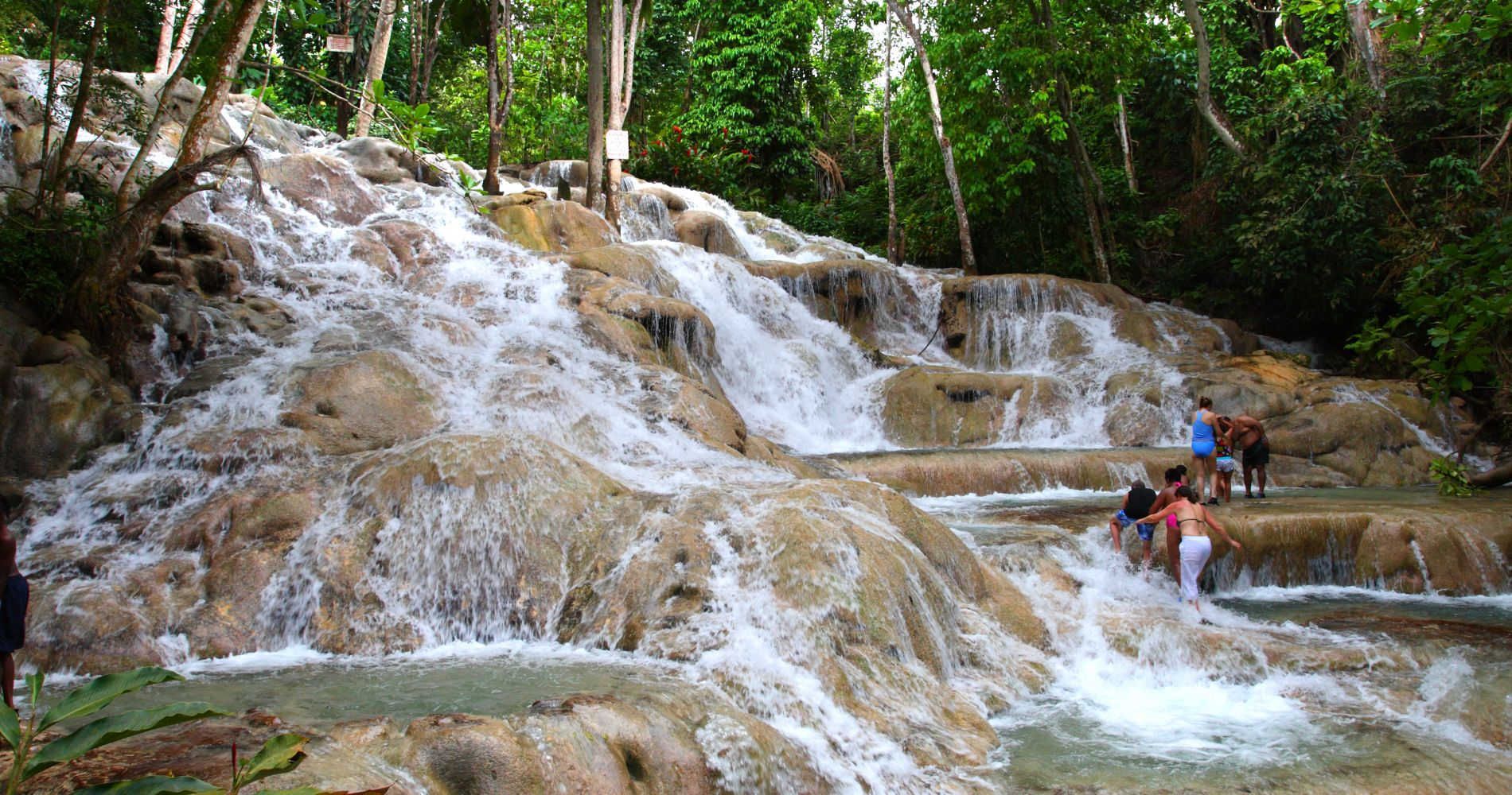 Dunn's River Falls Experience with Tubing Jamaica Tinggly Gifts