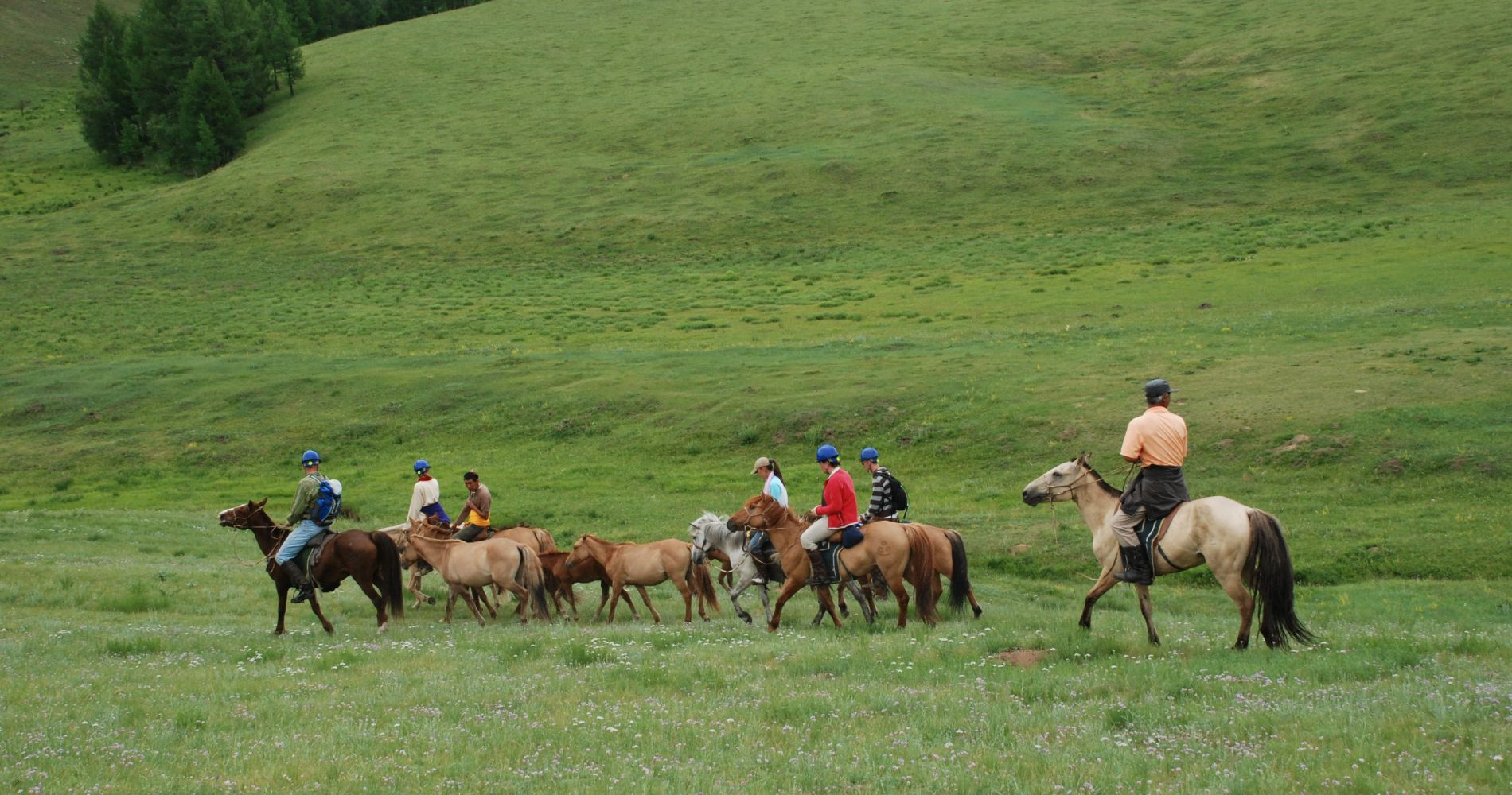 Tinggly horse trek Genghis Khan's Sacred Mountains gift