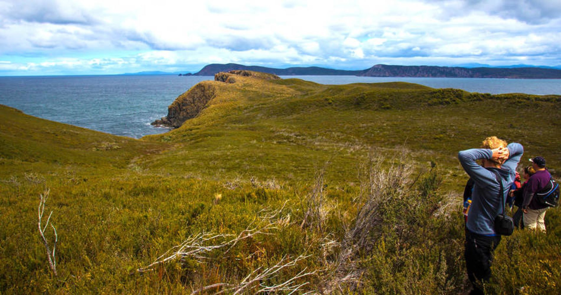 Bruny Island Gourmet Sightseeing Experience