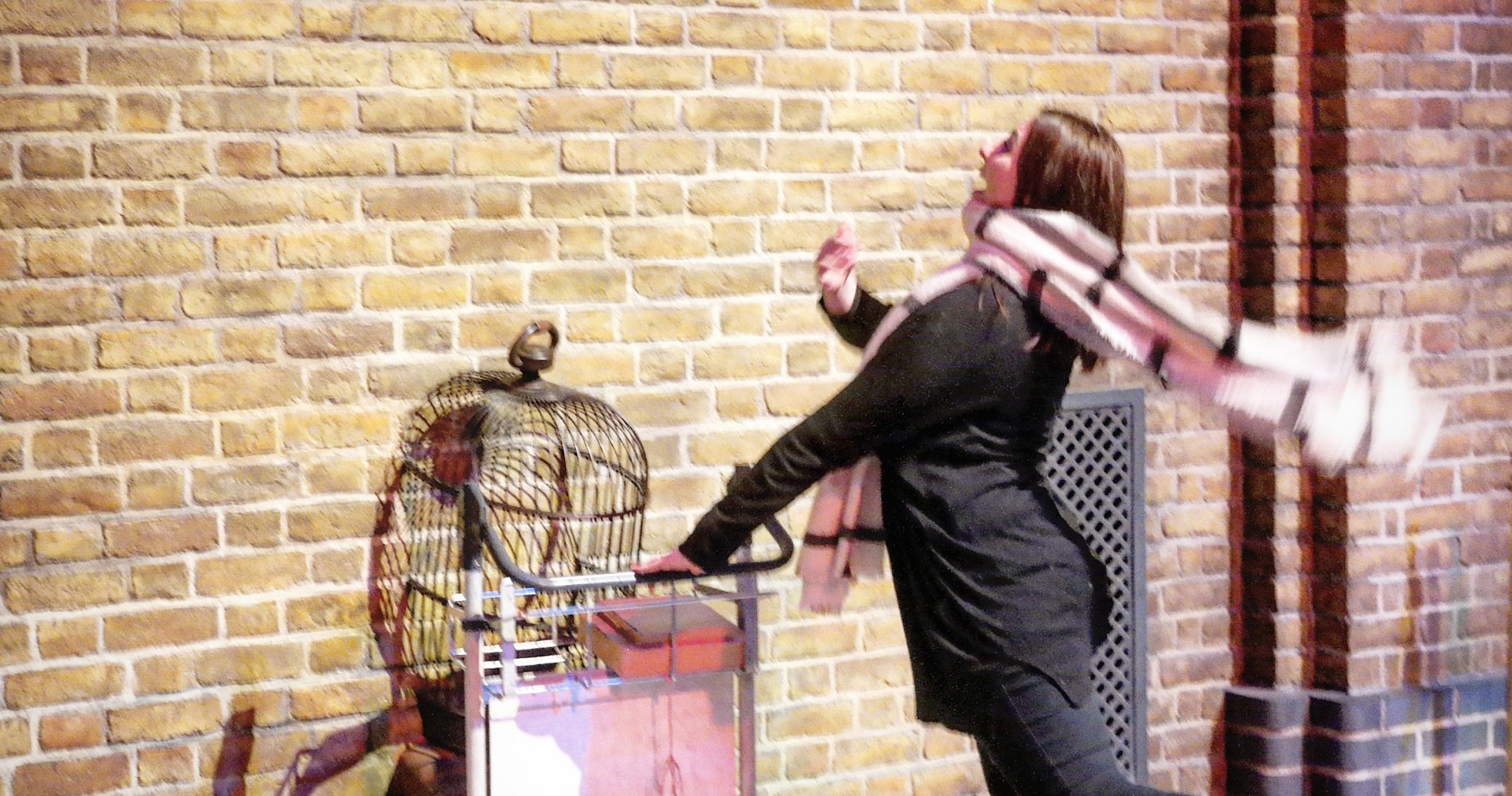 Harry Potter Studio Experience with Lunch United Kingdom Tinggly Gifts