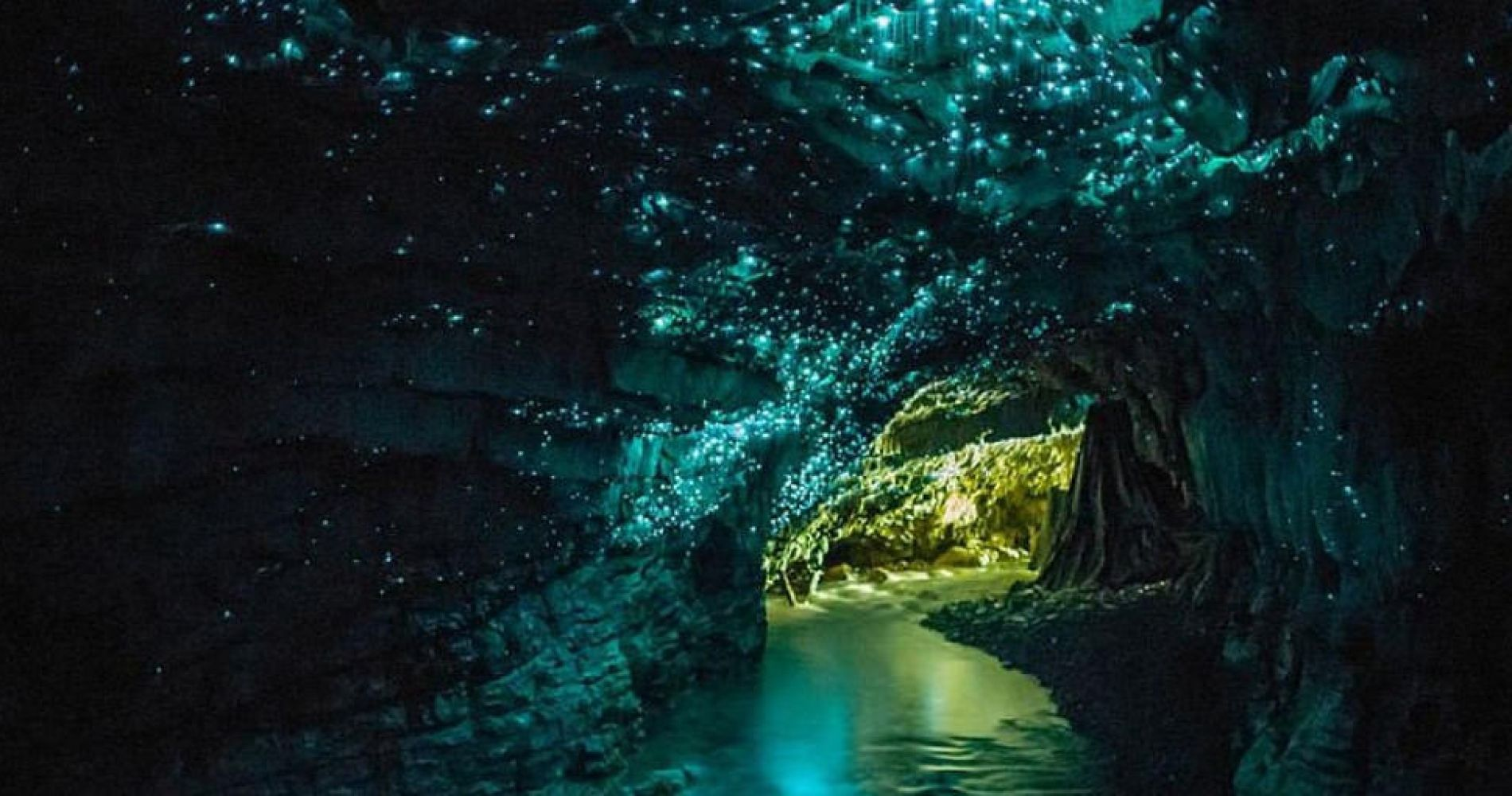 Waitomo Glow Worm Caves Experience Gift