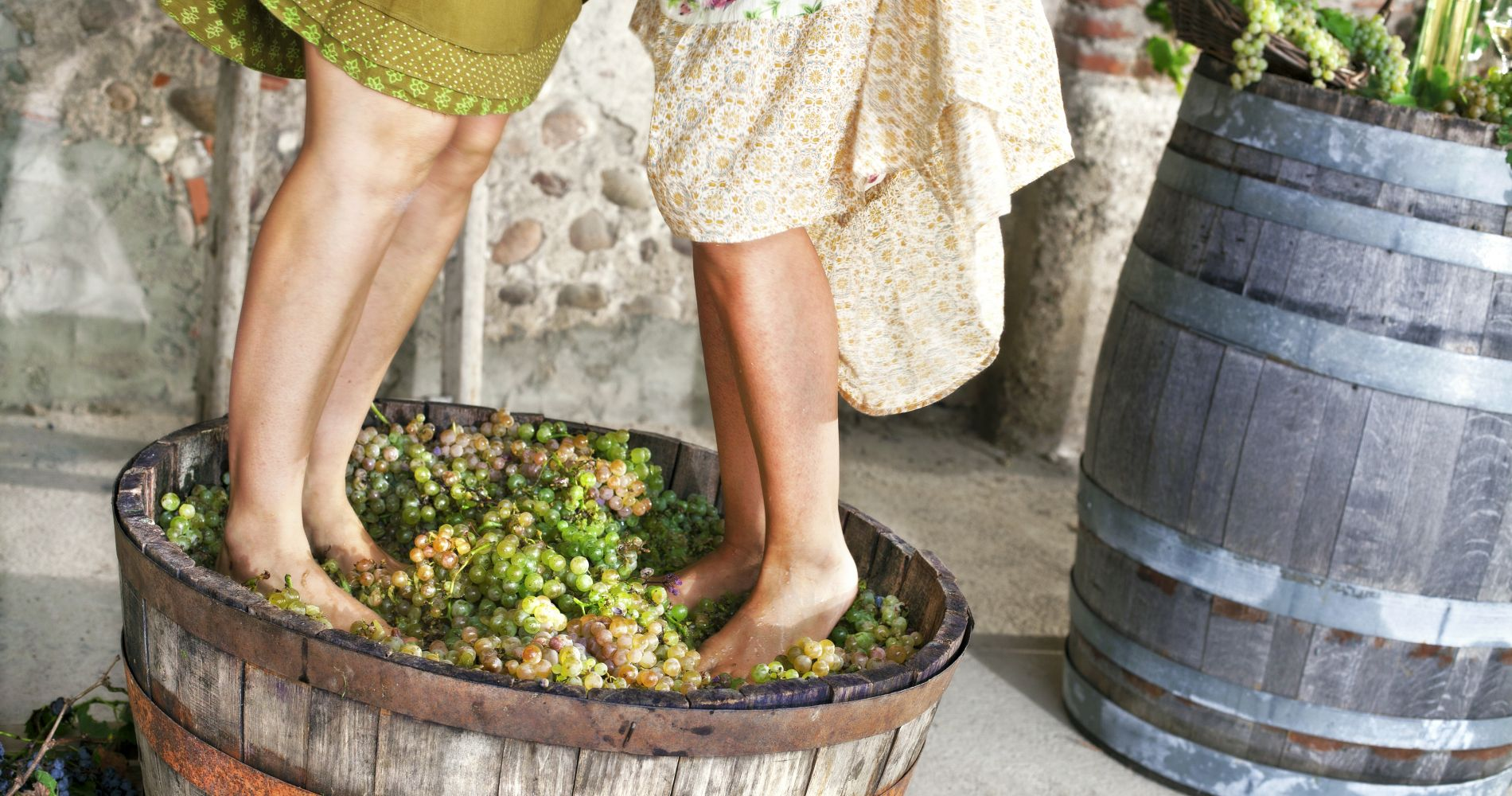 grape grapes stomp stomping france provence gift idea