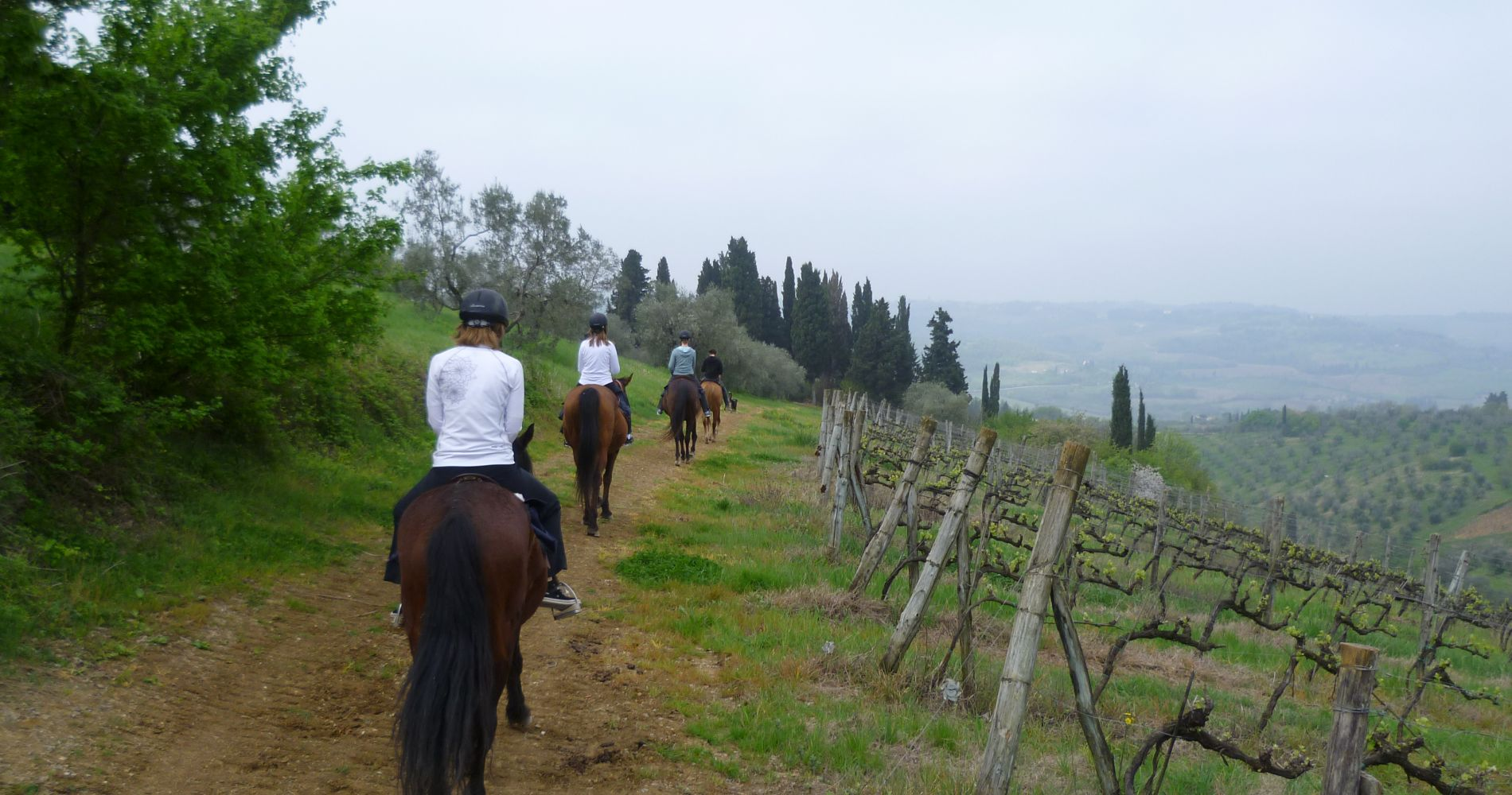 Horseback Riding in Tuscany Countryside from Florence