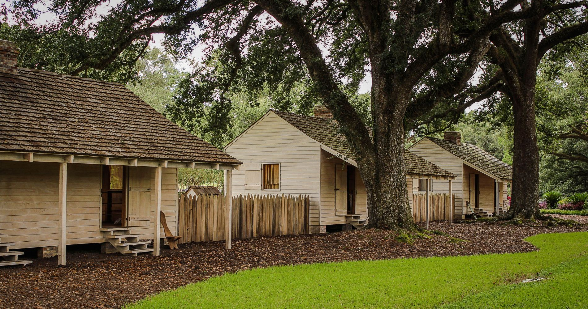 Cajun Culture: Boat Ride, Lunch, and Plantations Experience