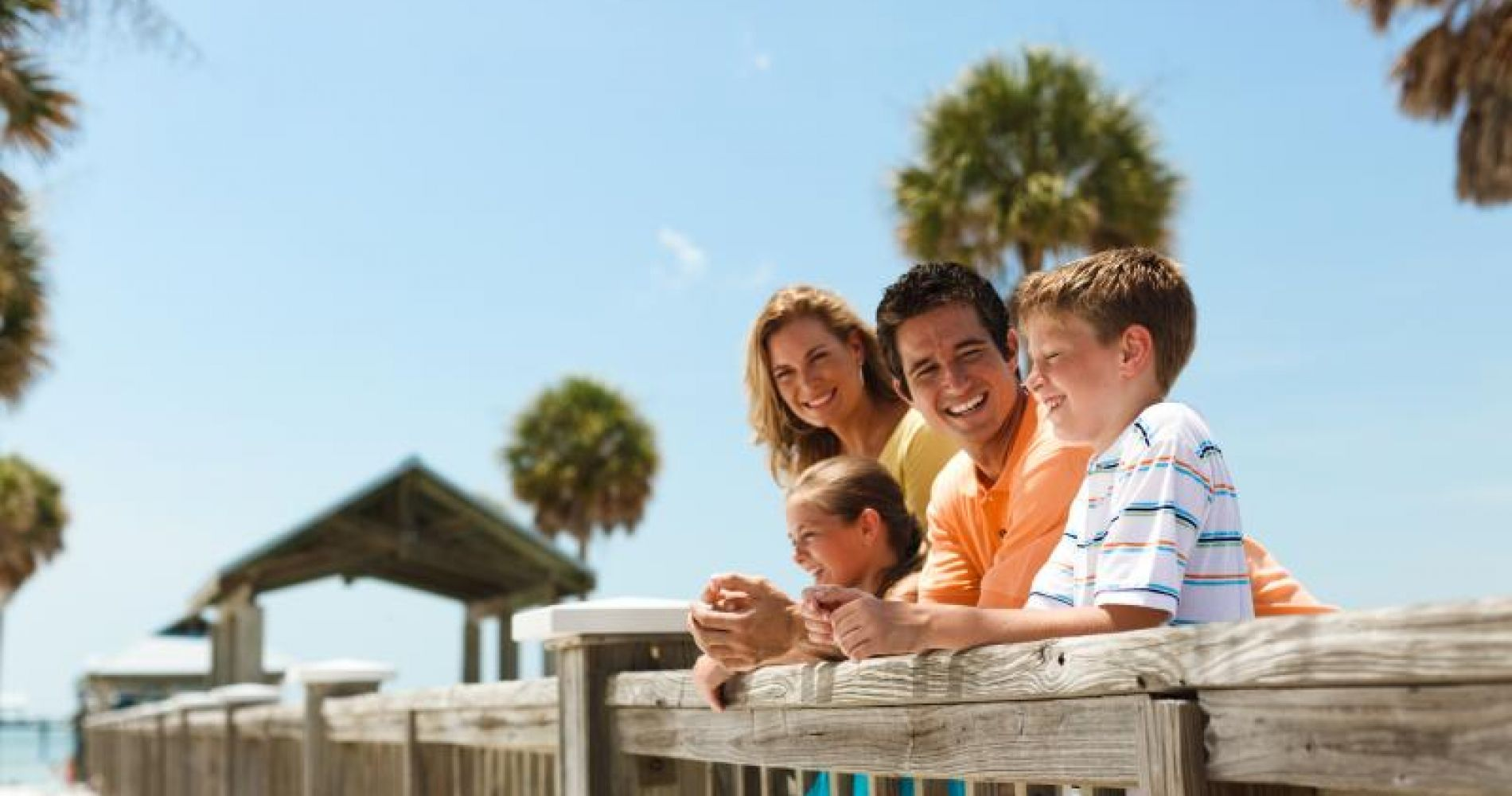 The Dolphin Encounter Boat Ride & Lunch from Orlando