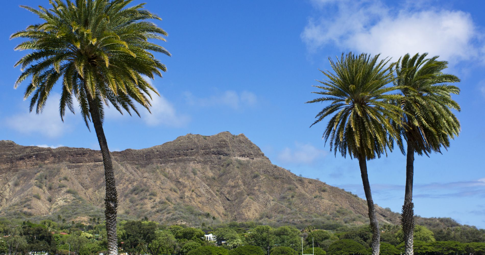 Diamond Head Crater Adventure in Honolulu for Two