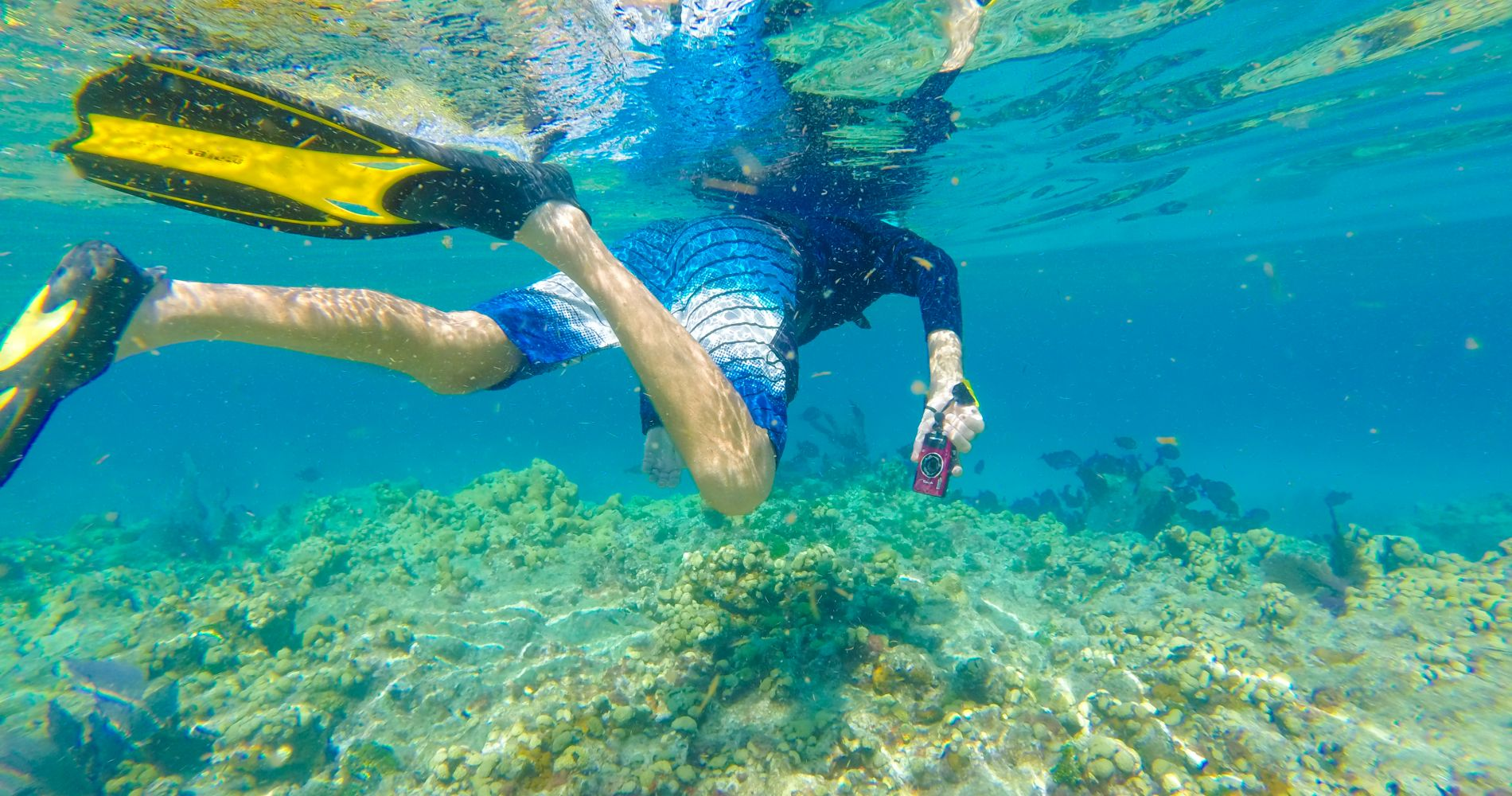 Key West Double Dip: 2-Stop Reef Snorkeling Experience for Two