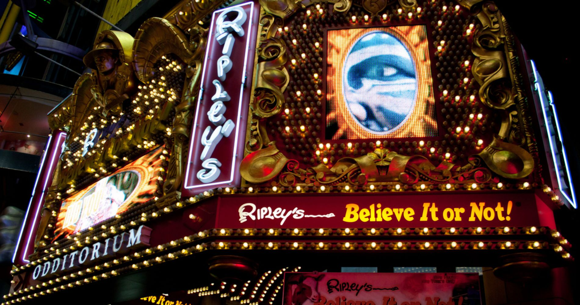 Ripley's Believe It or Not Experience Gift