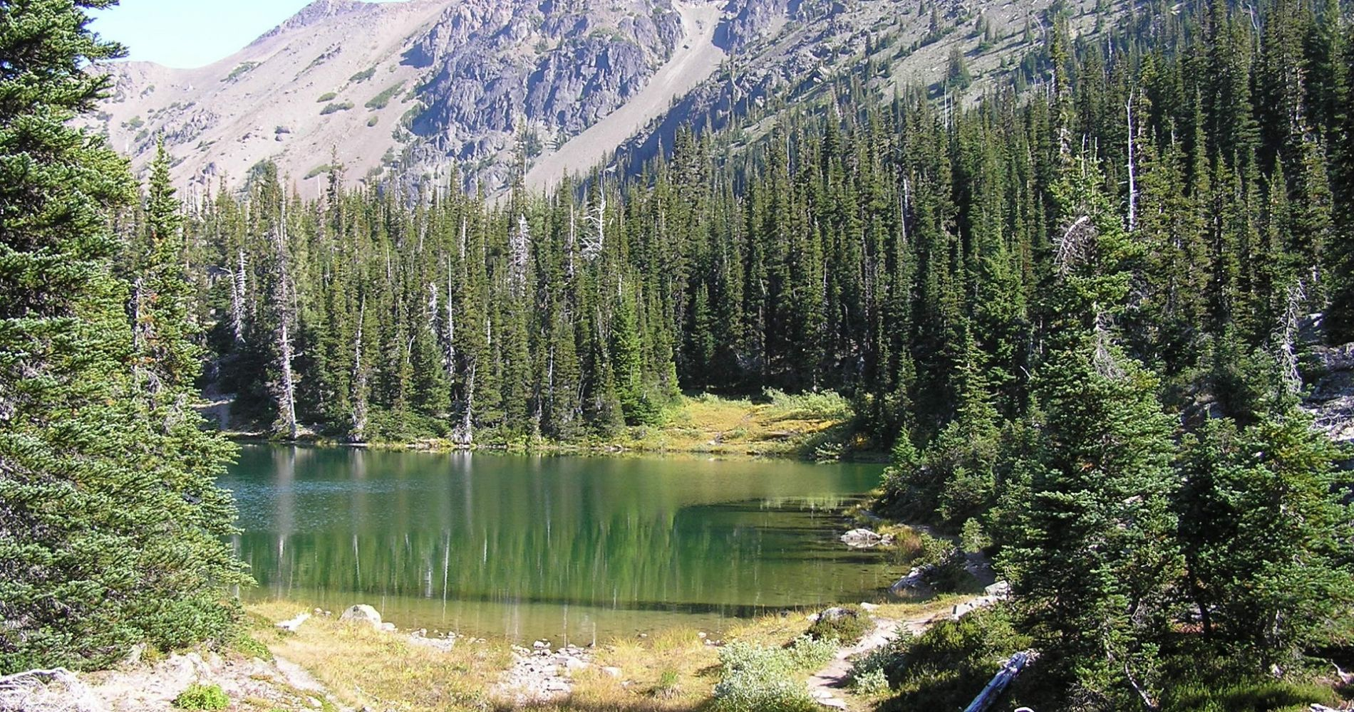 Olympic National Park Nature-Lovers Experience