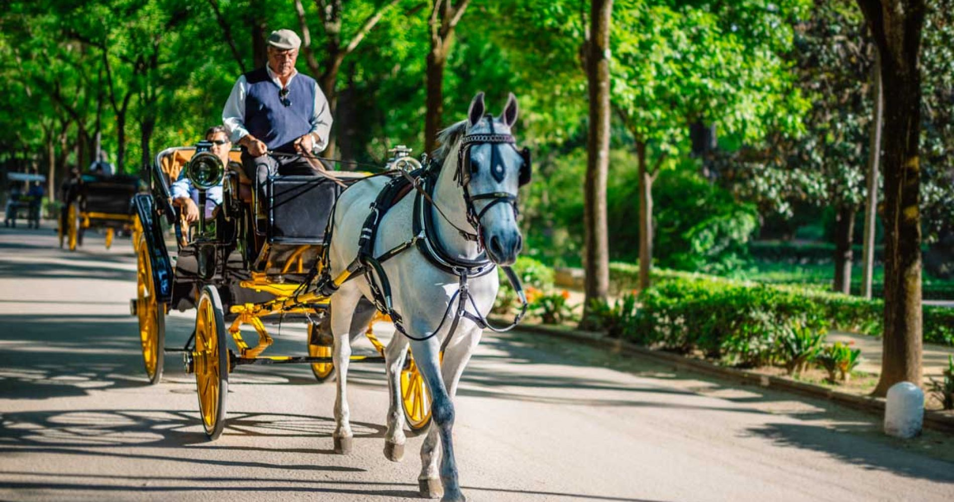 Romantic Carriage Ride in Seville for Two