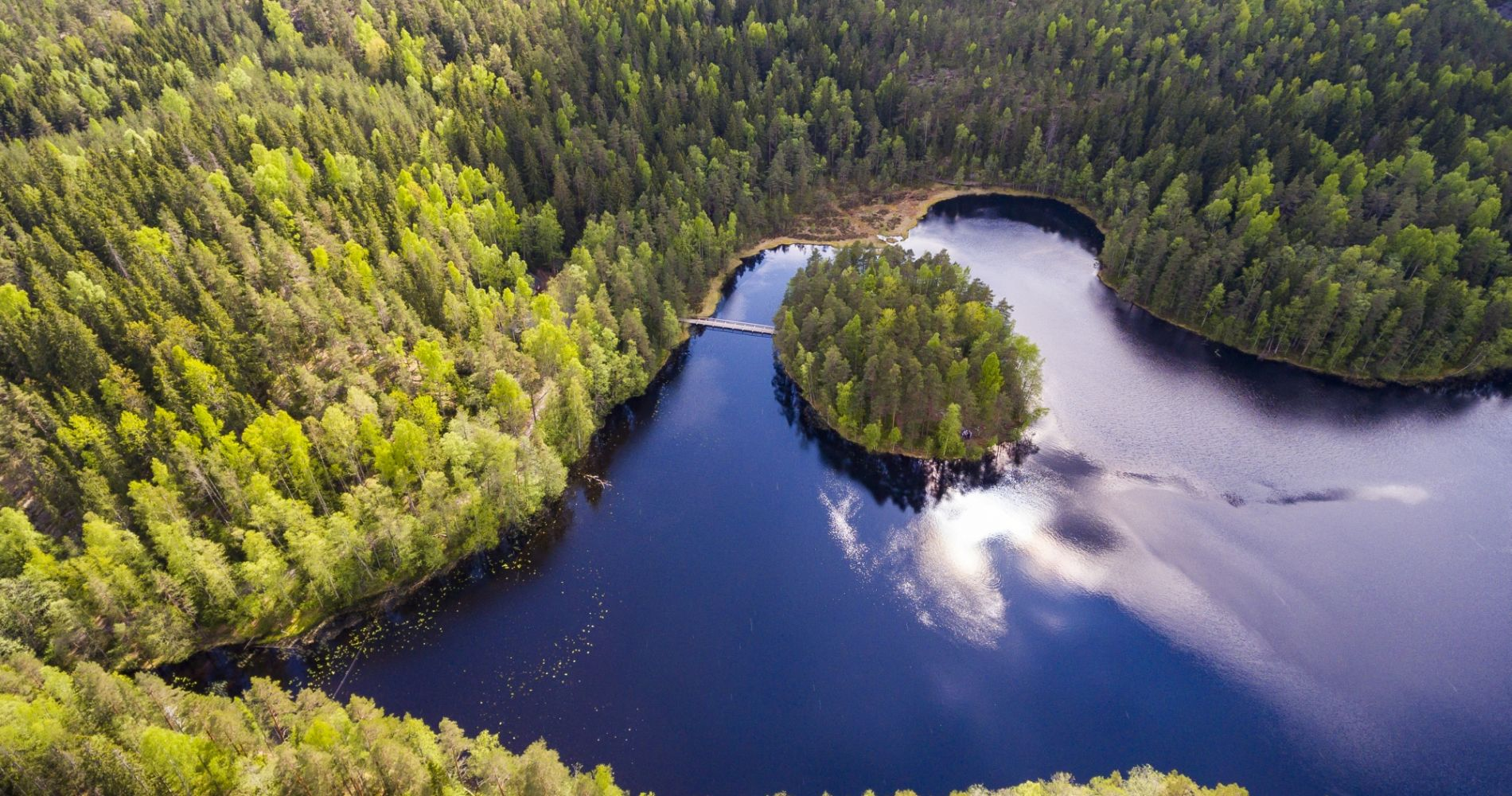 Nuuksio National Park Full-Day Hike from Helsinki