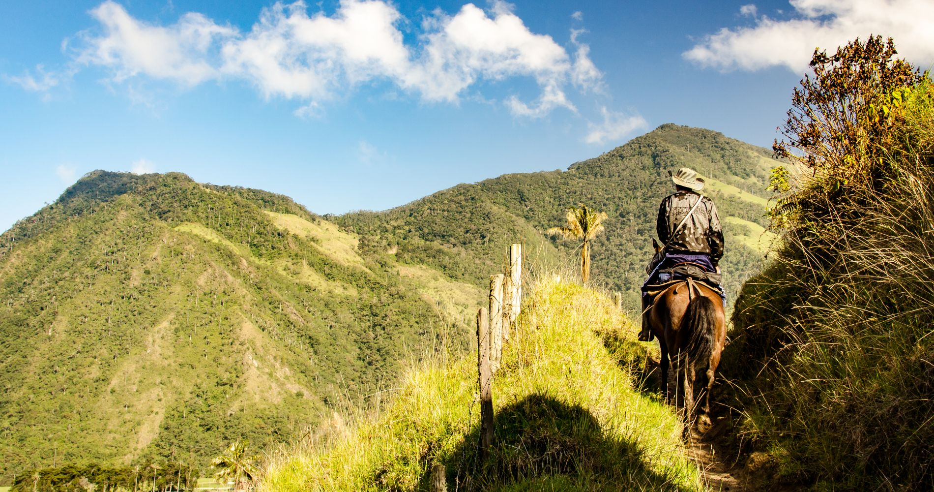Horseback Riding in Colombia for Two