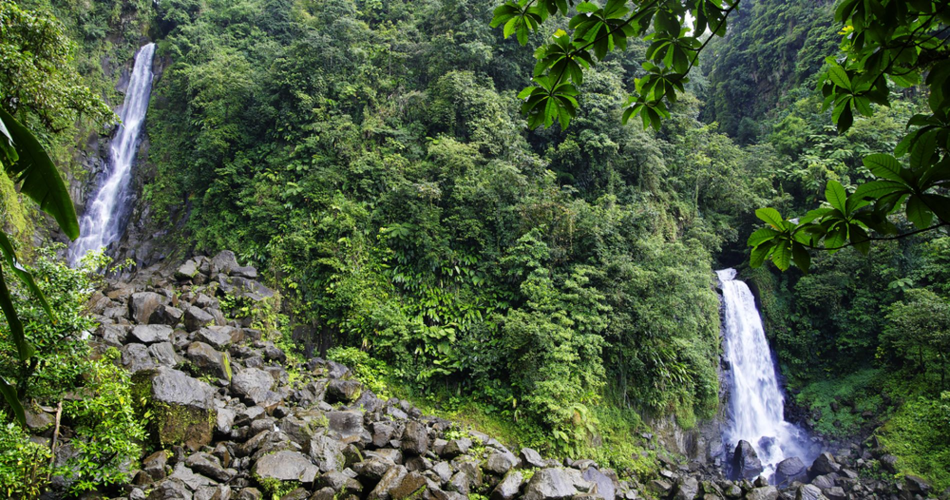 Morne Trois Pitons National Park Hiking in Dominica for Two