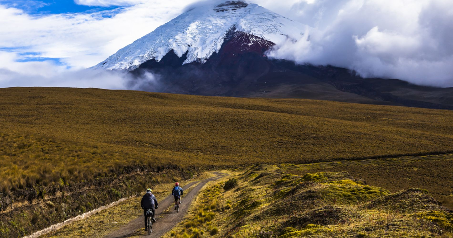 Cotopaxi Hiking and Biking Day Tour from Quito