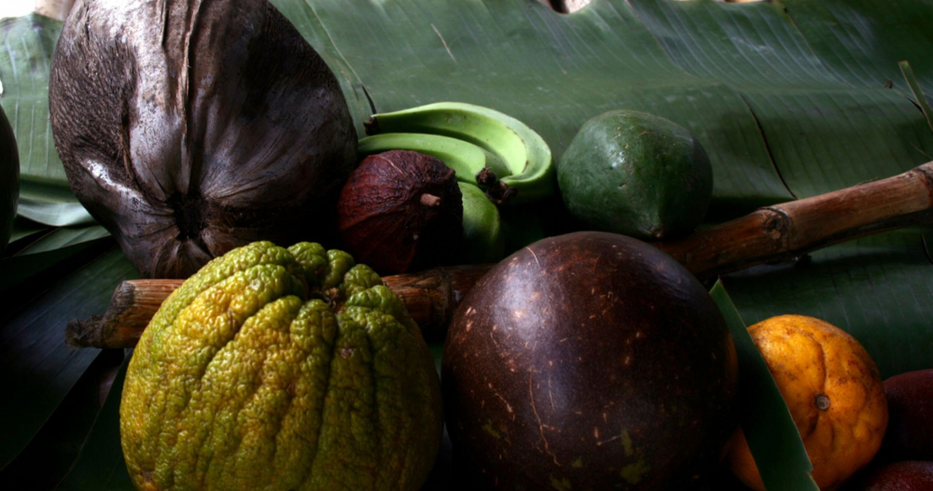 Flavors of St. Lucia Cooking Experience