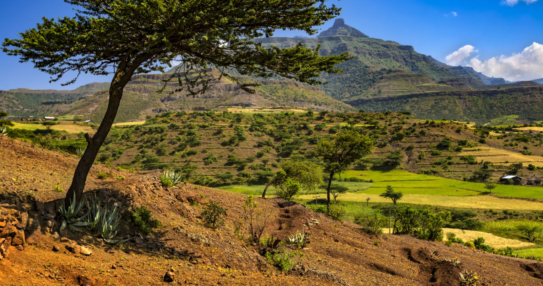 Lasta Mountains: Highland Eco-Trekking Tour in Lalibela