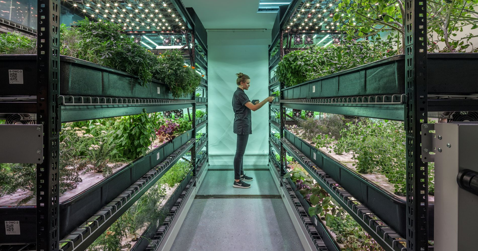 Hydroponics & Indoor Farming Experience for Two