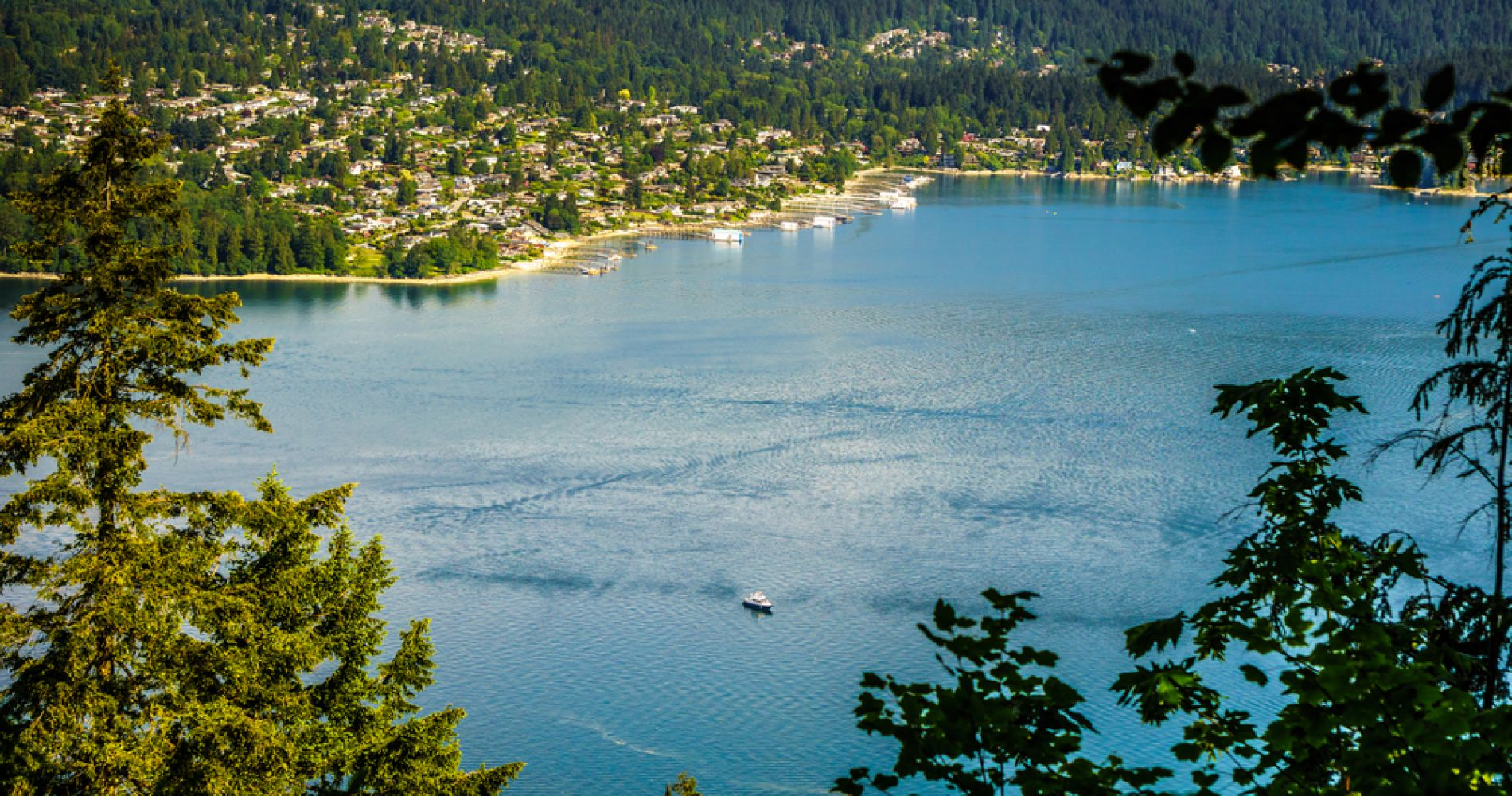 Indian Arm Half-Day Lunch Cruise from Vancouver for Two