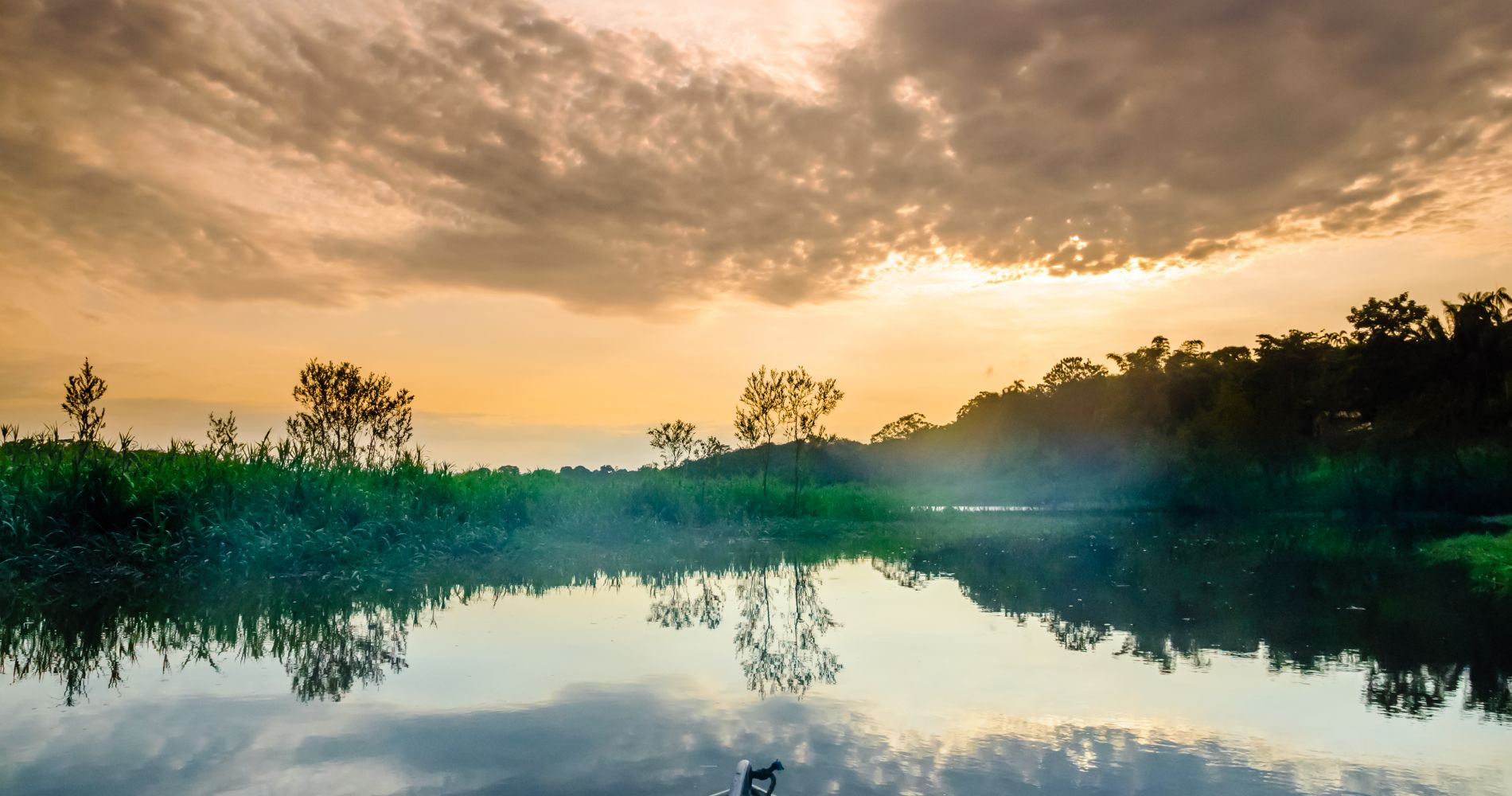 Full-Day Experience on the Amazon River in Brazil for Two