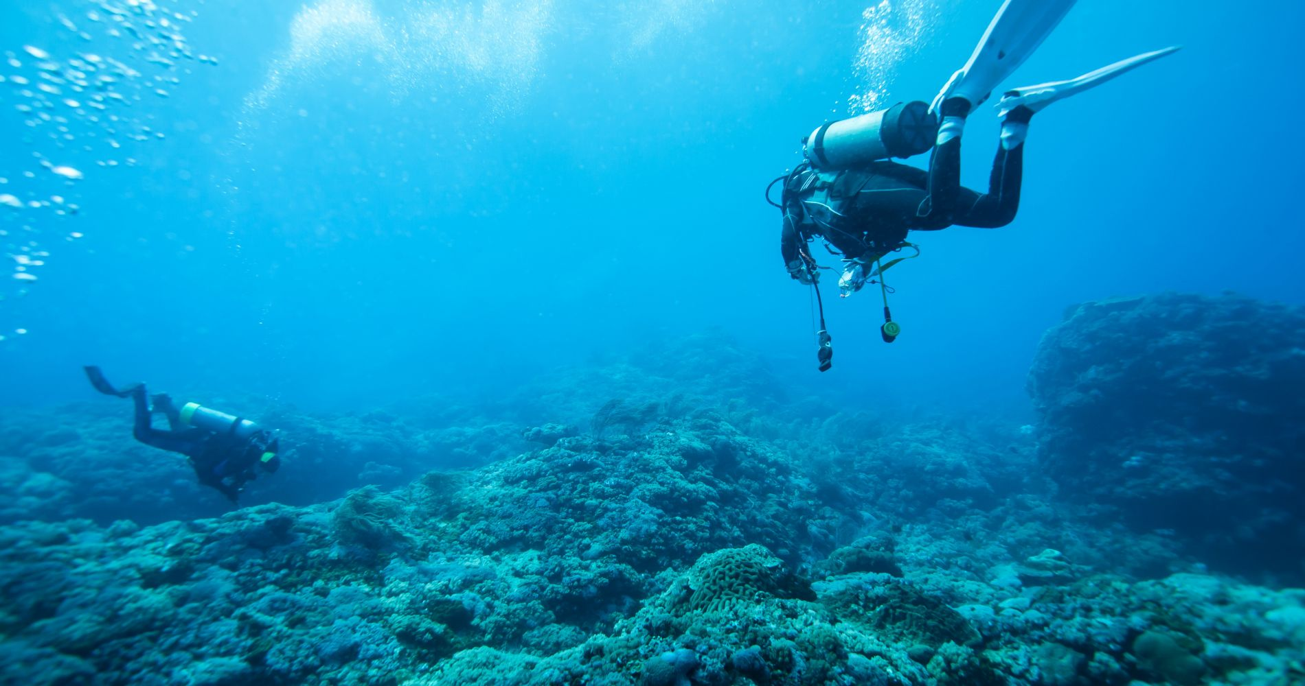 Full-Day Scuba Diving in Tenerife  for Two
