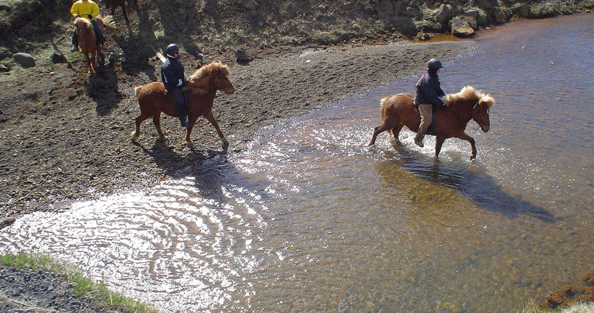 Lava Horse Riding Tour Iceland Tinggly Experience Gift